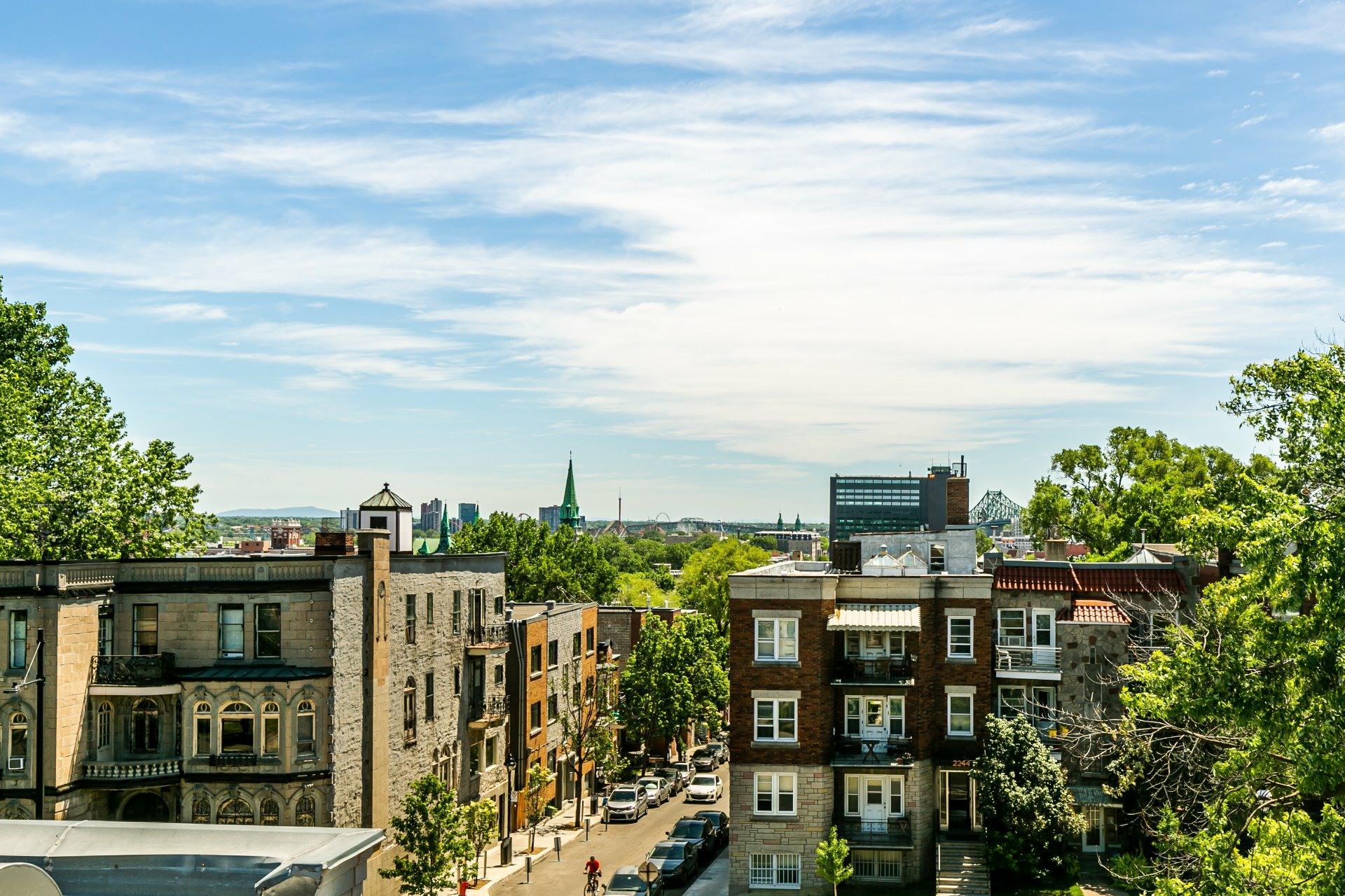 image 17 - Appartement À vendre Le Plateau-Mont-Royal Montréal  - 6 pièces