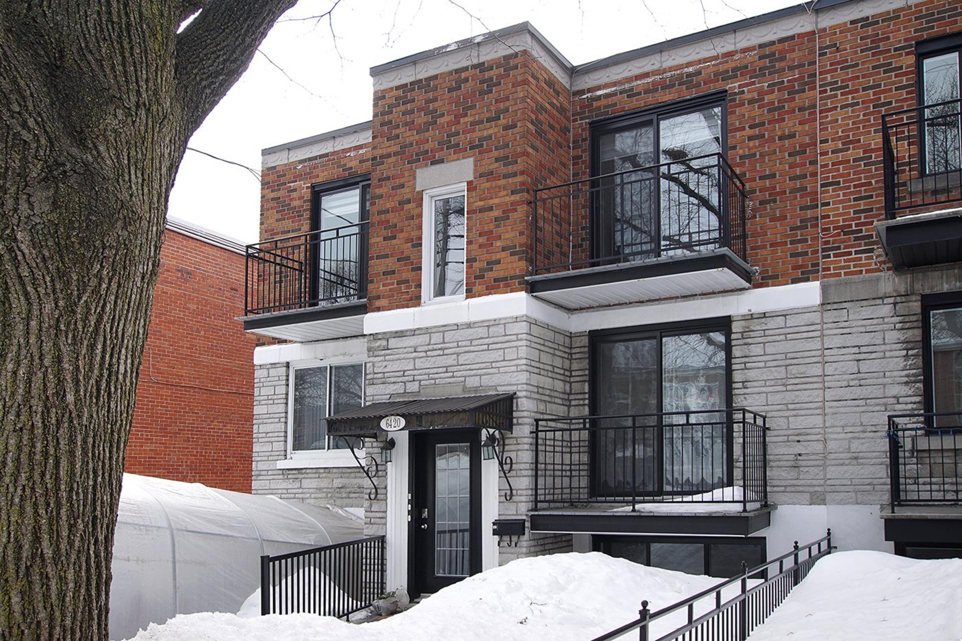 image 0 - Loft For rent Rosemont/La Petite-Patrie Montréal  - 3 rooms