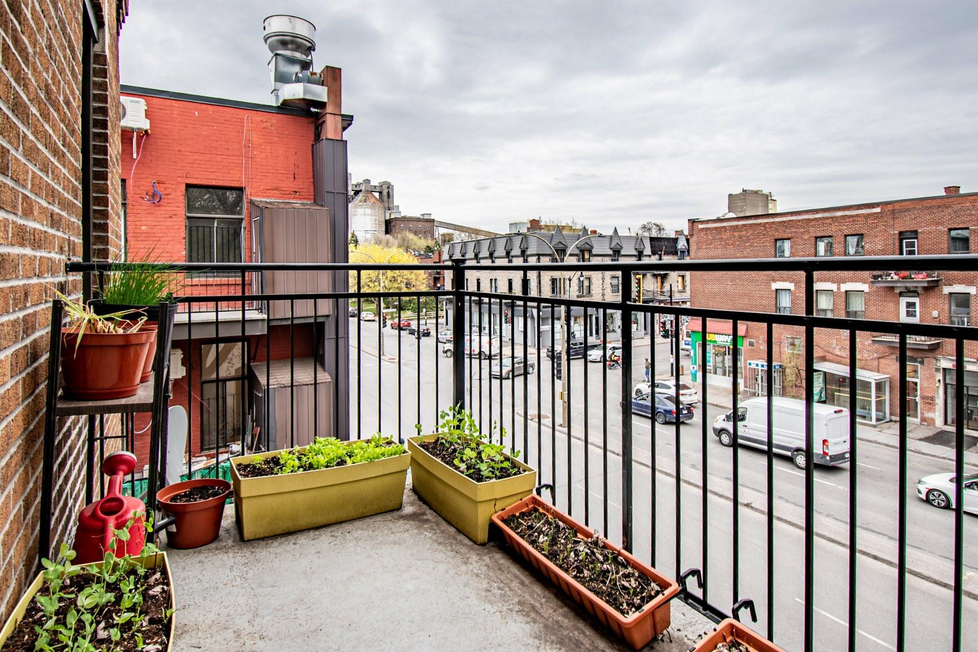 image 12 - Appartement À vendre Mercier/Hochelaga-Maisonneuve Montréal  - 5 pièces