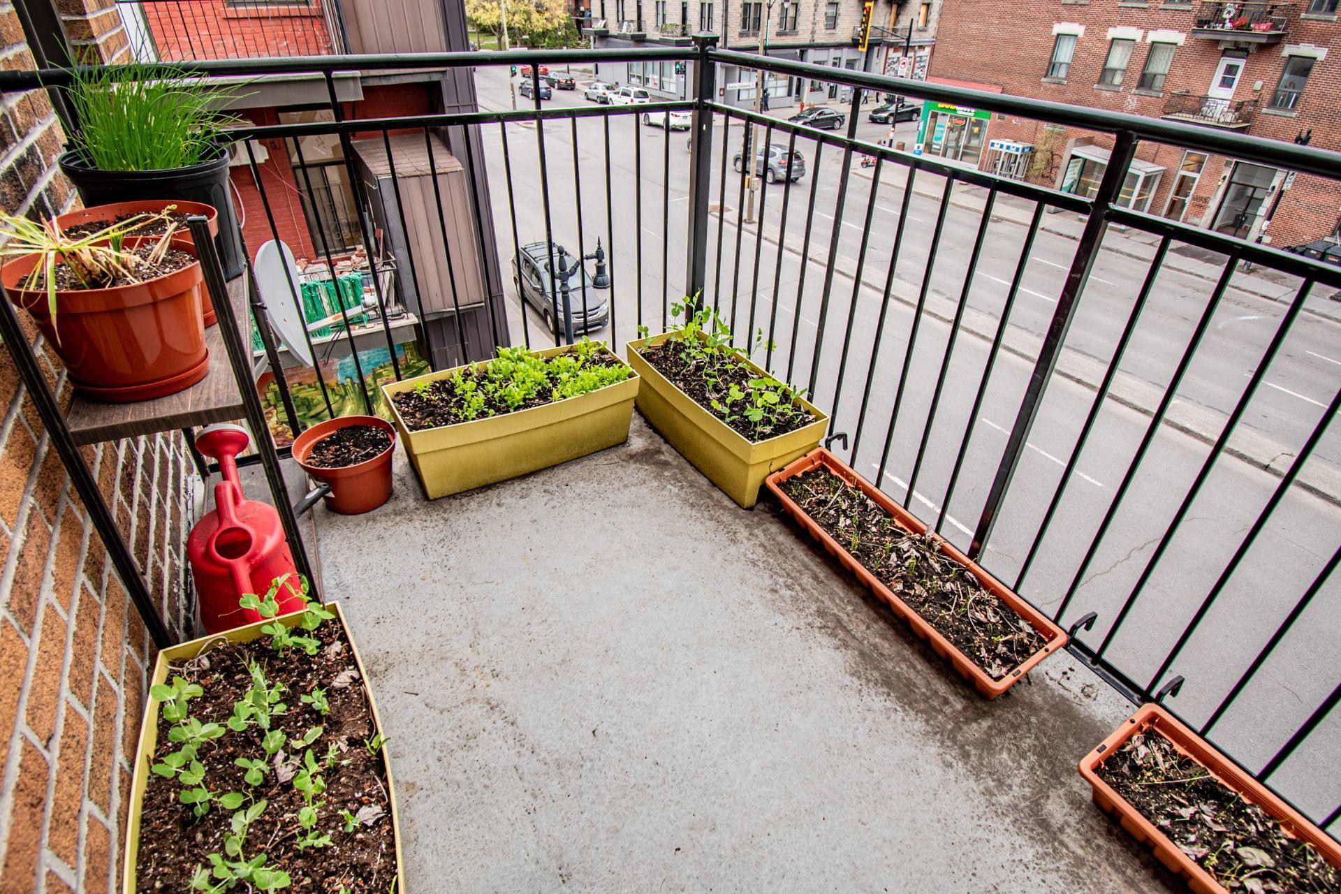 image 13 - Appartement À vendre Mercier/Hochelaga-Maisonneuve Montréal  - 5 pièces