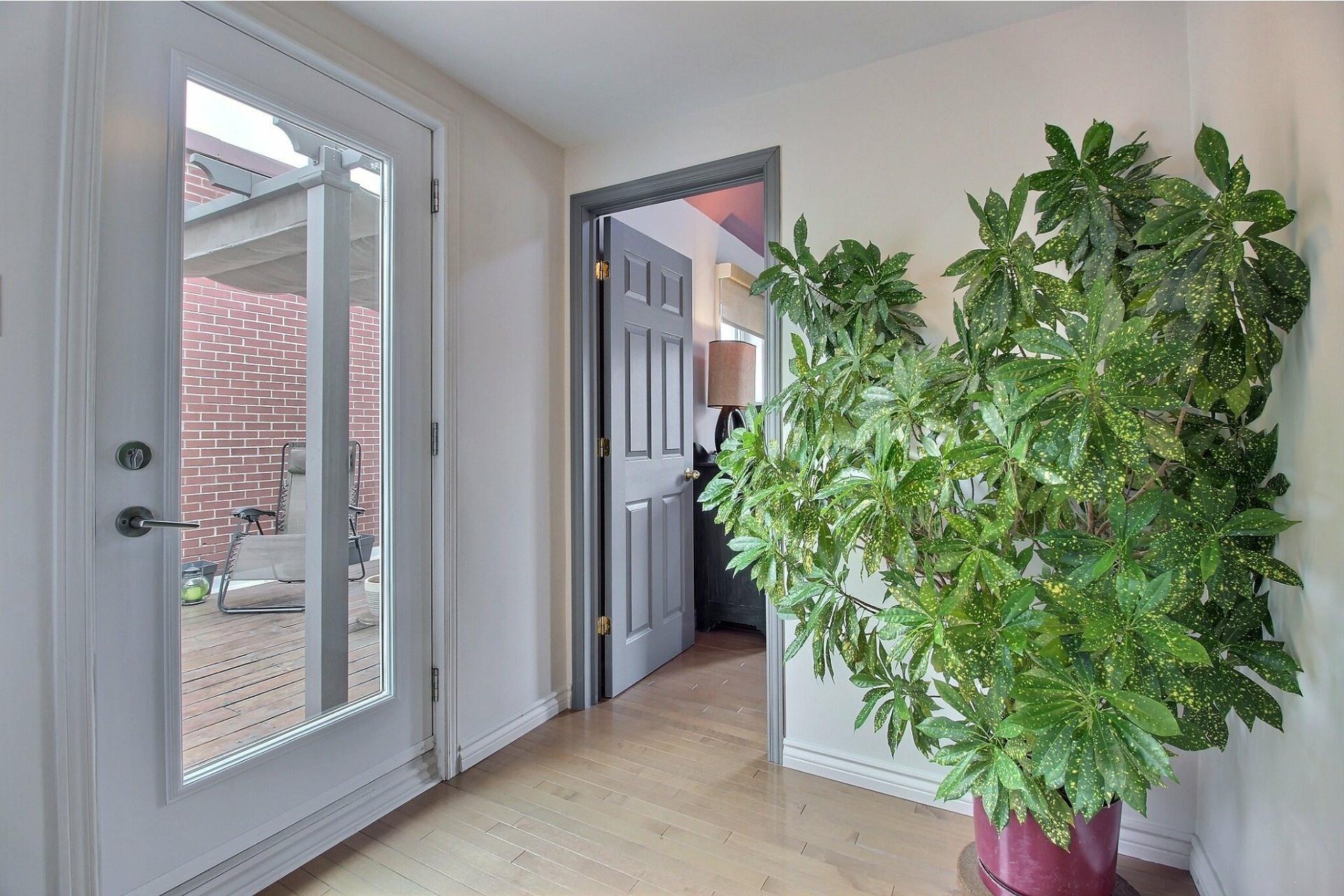 image 18 - House For sale Mercier/Hochelaga-Maisonneuve Montréal  - 7 rooms