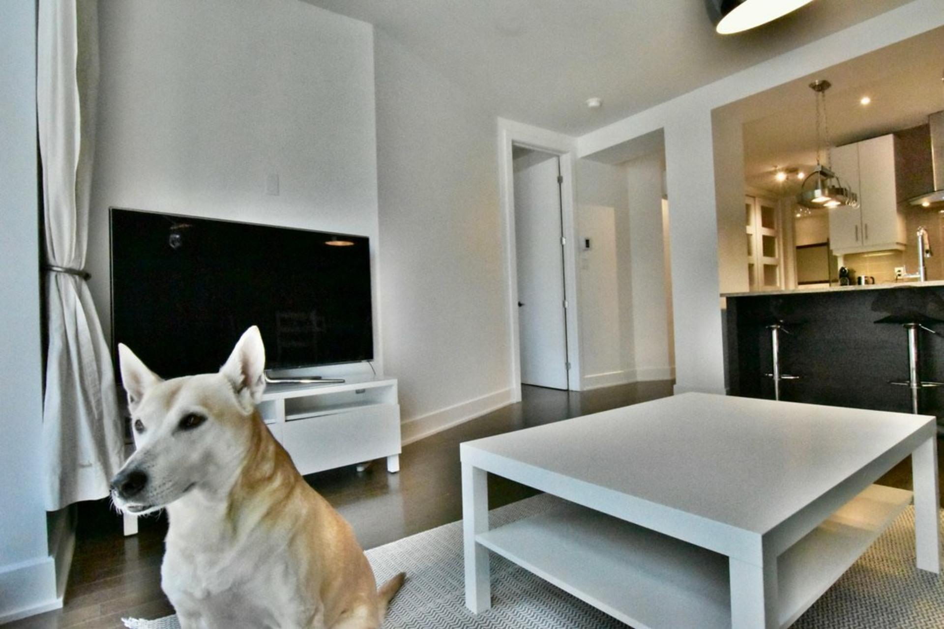 image 8 - Departamento Para alquiler Rosemont/La Petite-Patrie Montréal  - 8 habitaciones