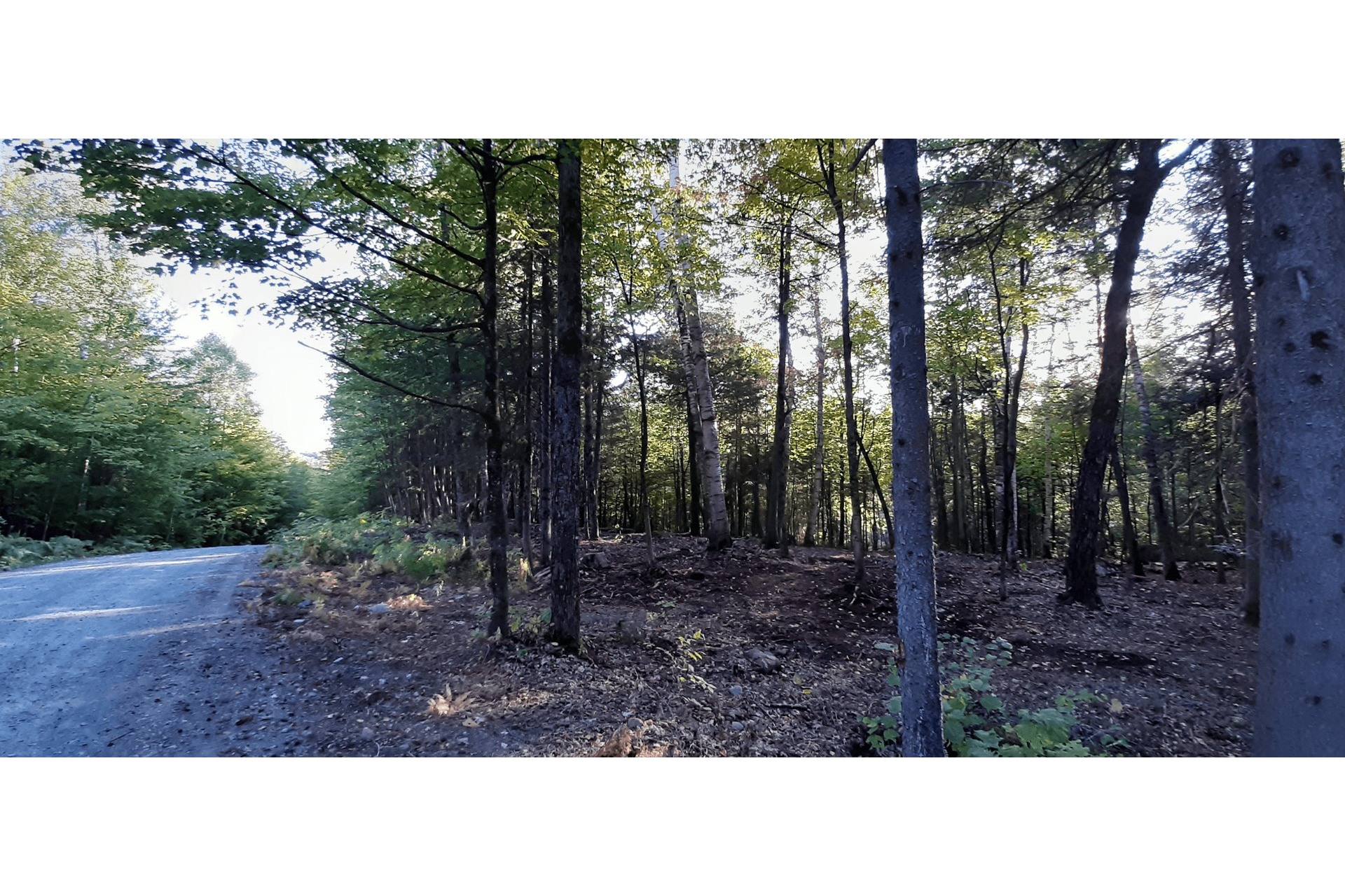 image 5 - Land For sale Wentworth-Nord