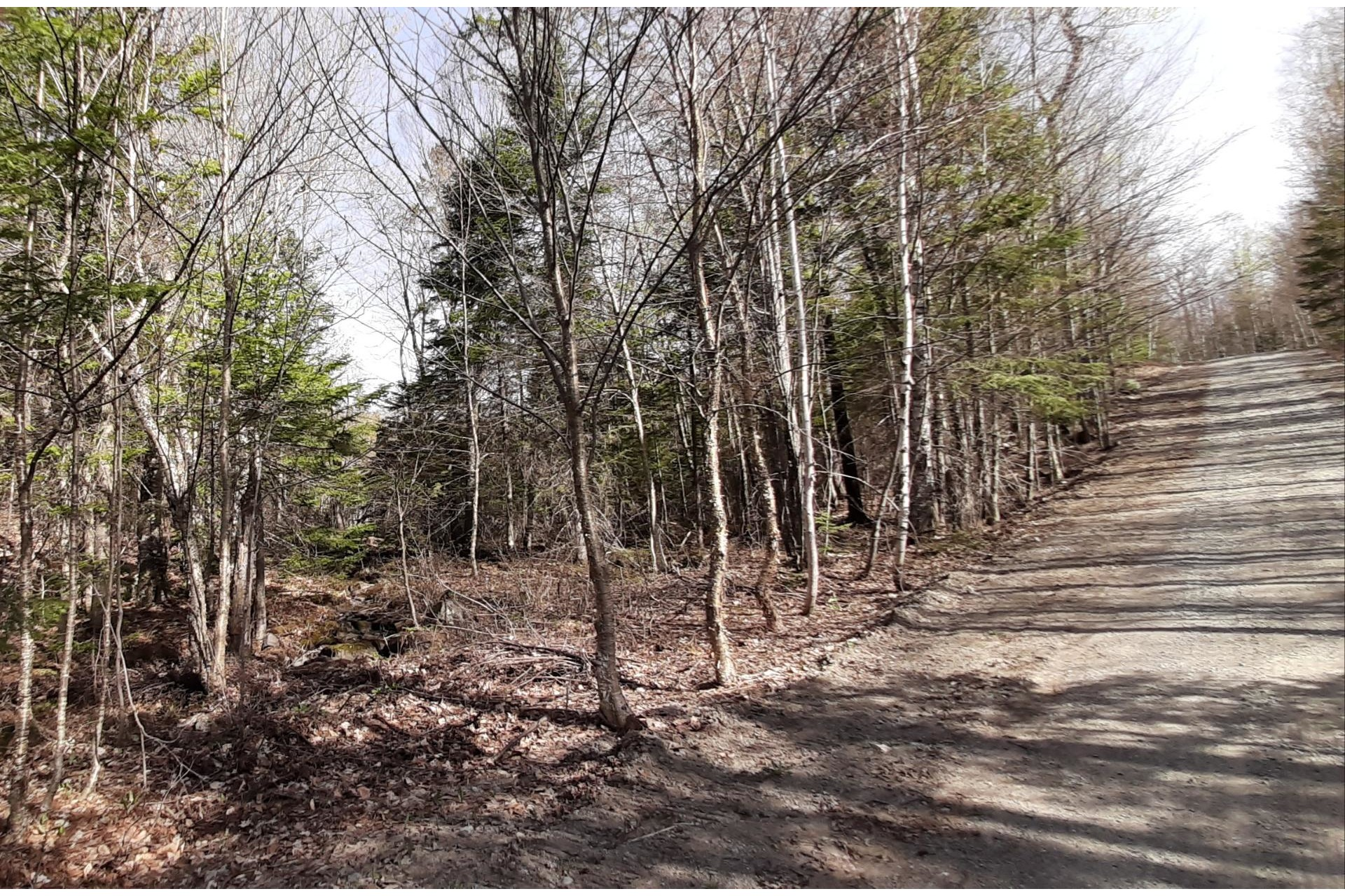 image 6 - Land For sale Wentworth-Nord