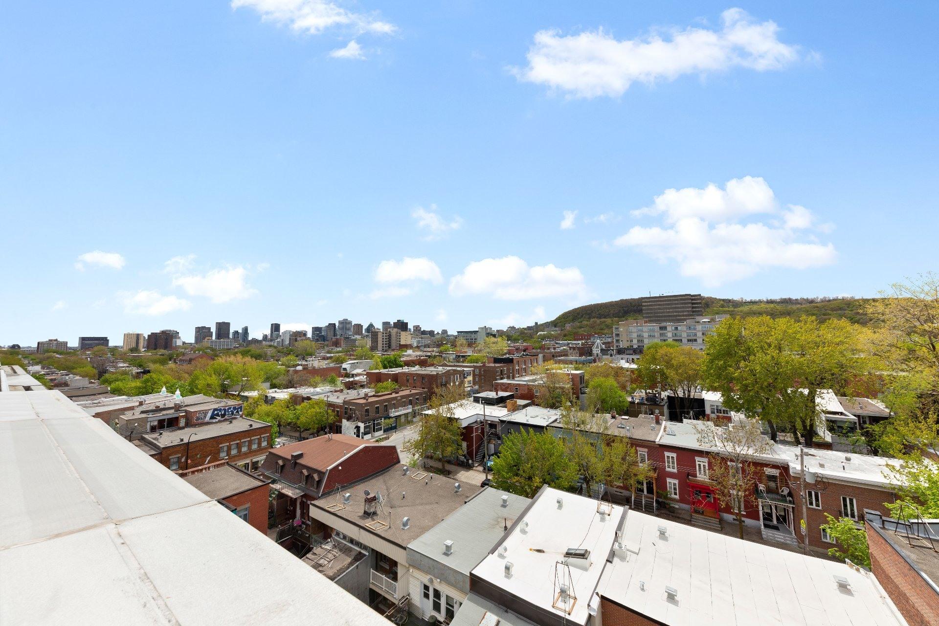 image 37 - 公寓 出售 Le Plateau-Mont-Royal Montréal  - 7 室