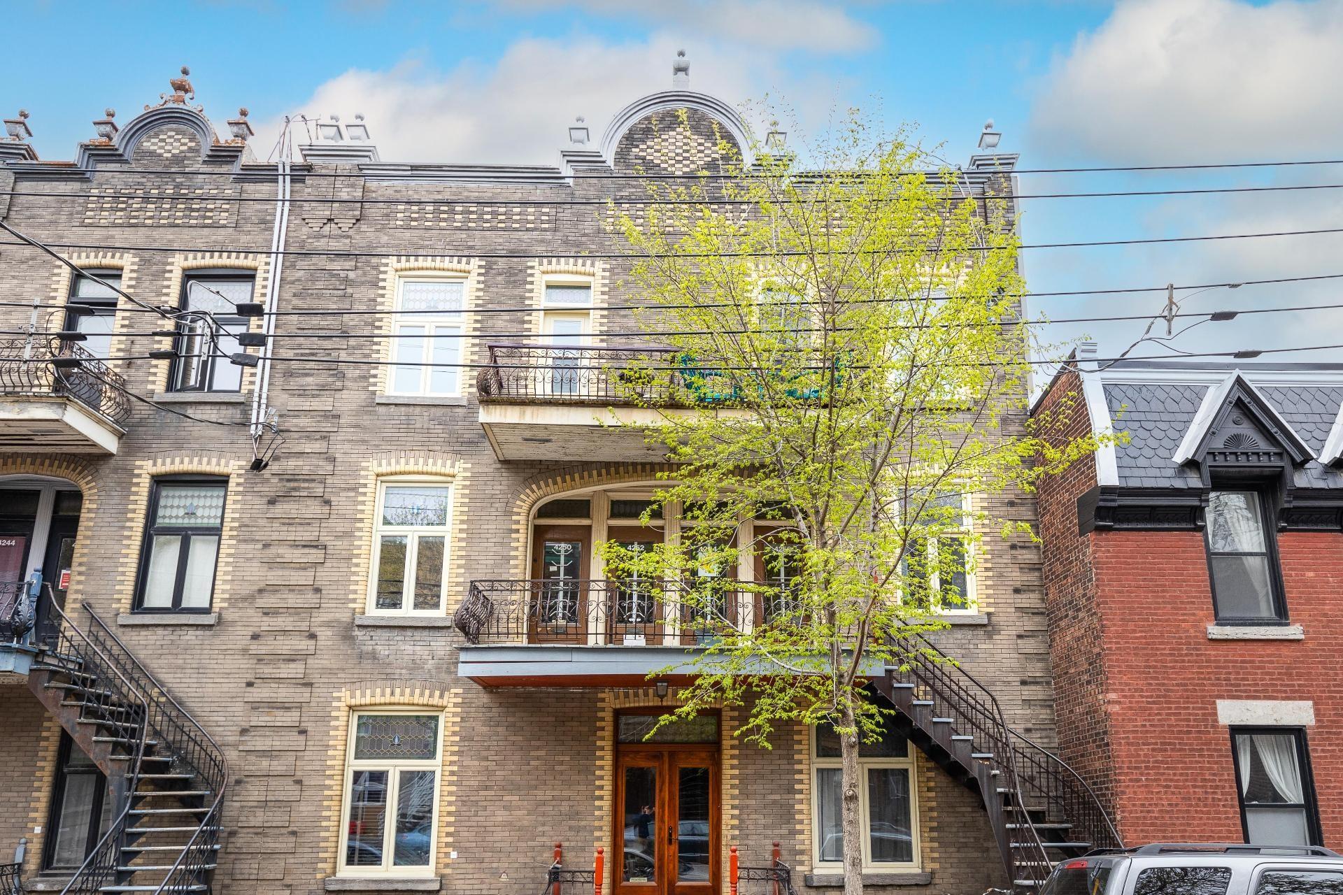 image 36 - Quadruplex À vendre Le Plateau-Mont-Royal Montréal  - 10 pièces