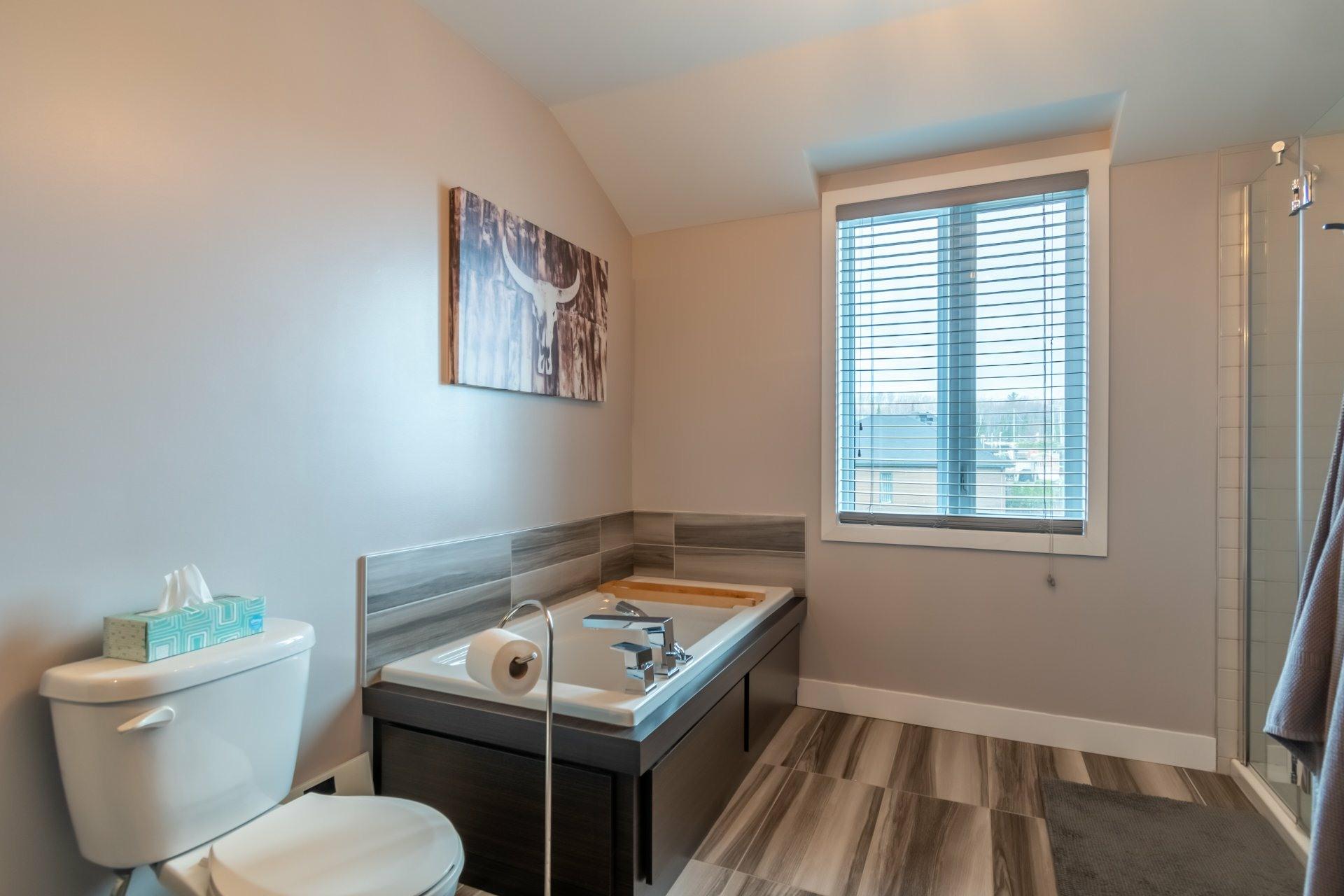 image 19 - House For sale Trois-Rivières - 9 rooms