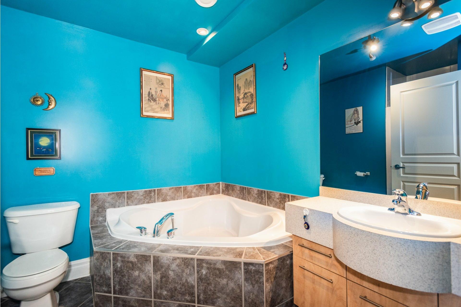image 18 - Apartment For sale Le Plateau-Mont-Royal Montréal  - 7 rooms