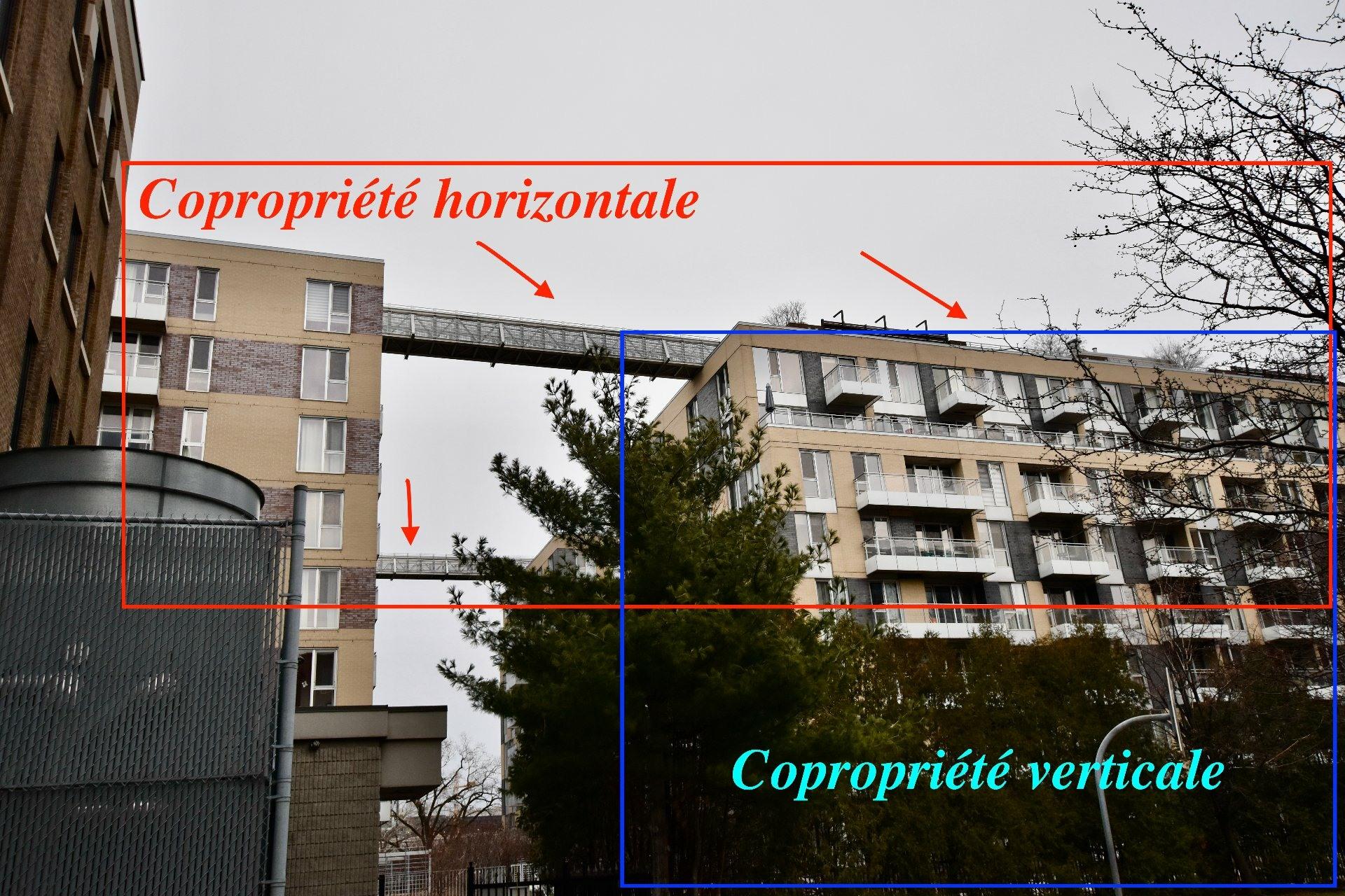 image 28 - Appartement À vendre Le Sud-Ouest Montréal  - 11 pièces