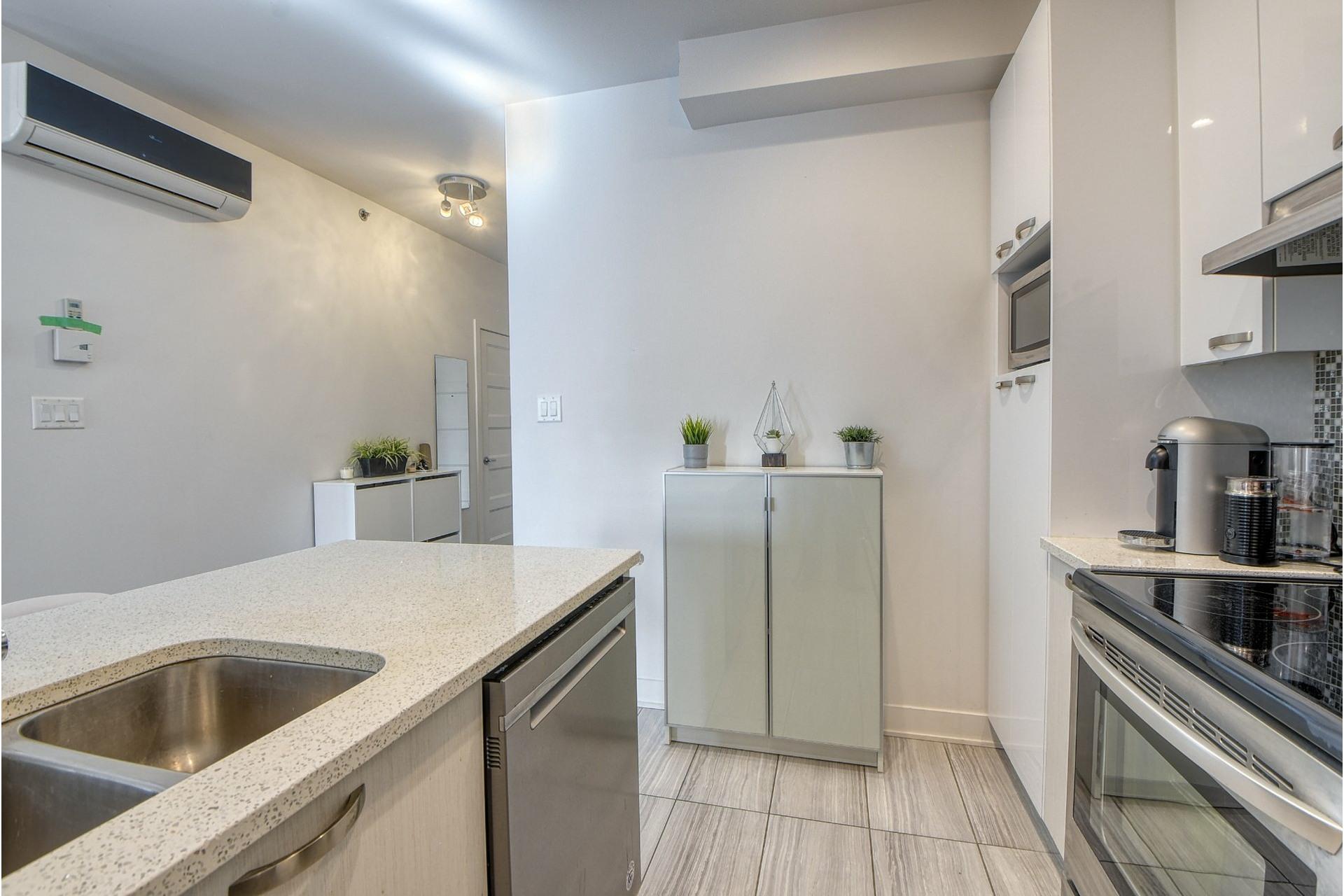 image 9 - Appartement À vendre Le Sud-Ouest Montréal  - 8 pièces