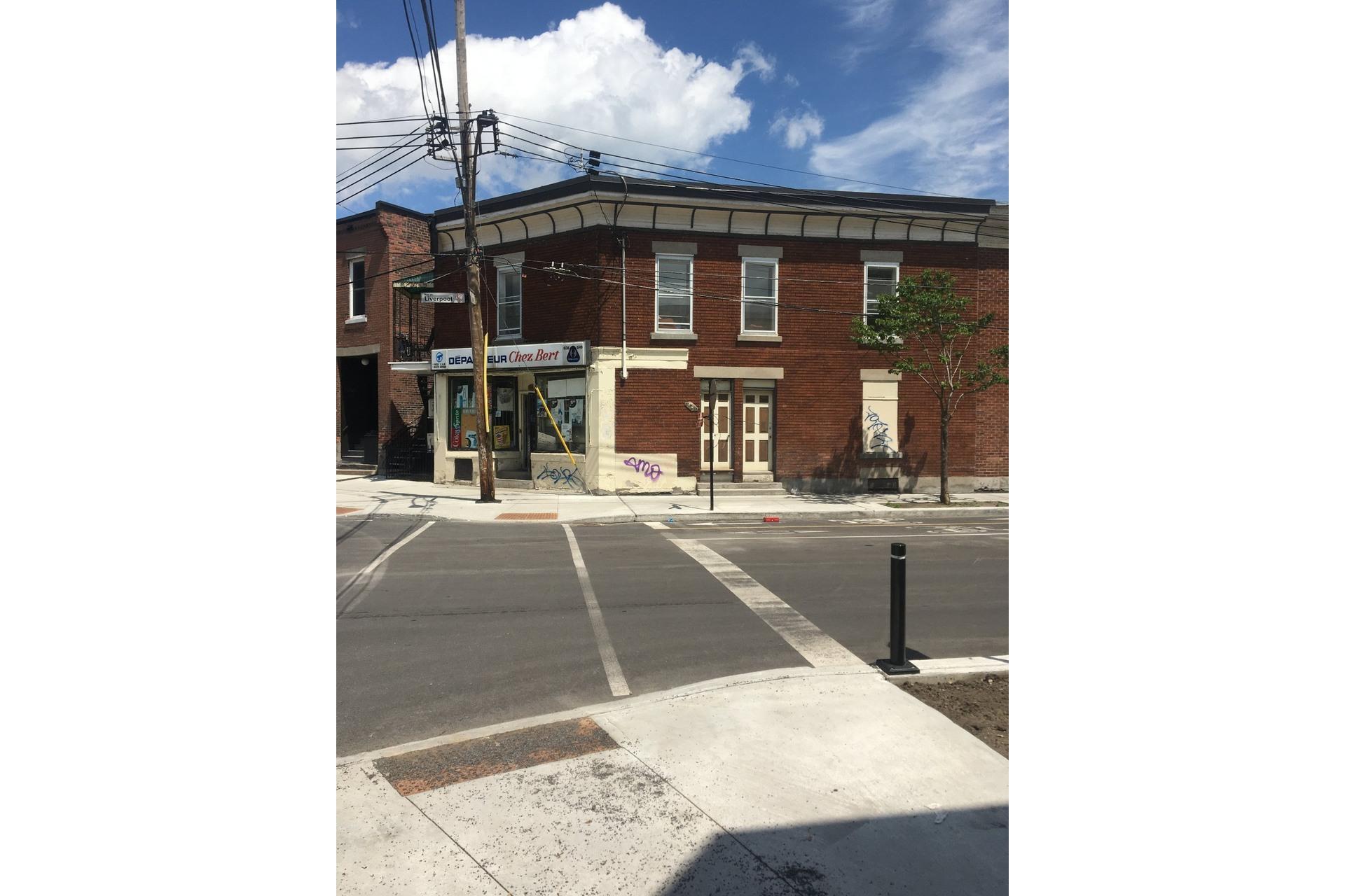 image 3 - Duplex À vendre Le Sud-Ouest Montréal  - 6 pièces