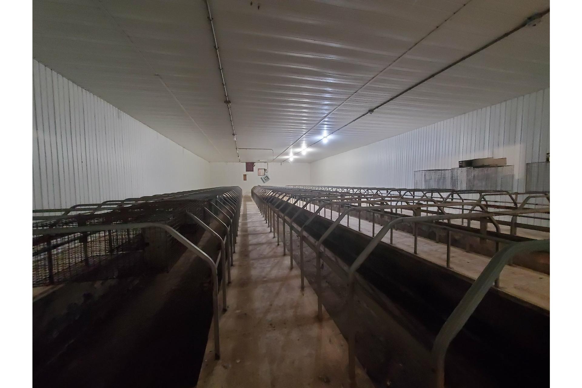 image 6 - Farmhouse For sale Saint-Pierre-les-Becquets - 10 rooms