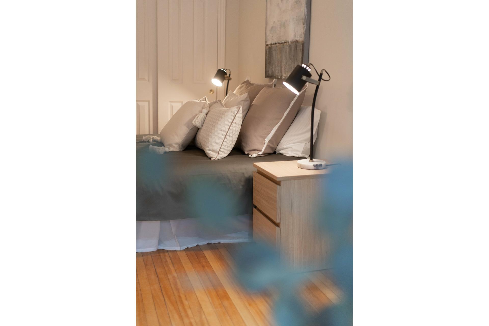 image 32 - Triplex For sale Le Plateau-Mont-Royal Montréal  - 7 rooms