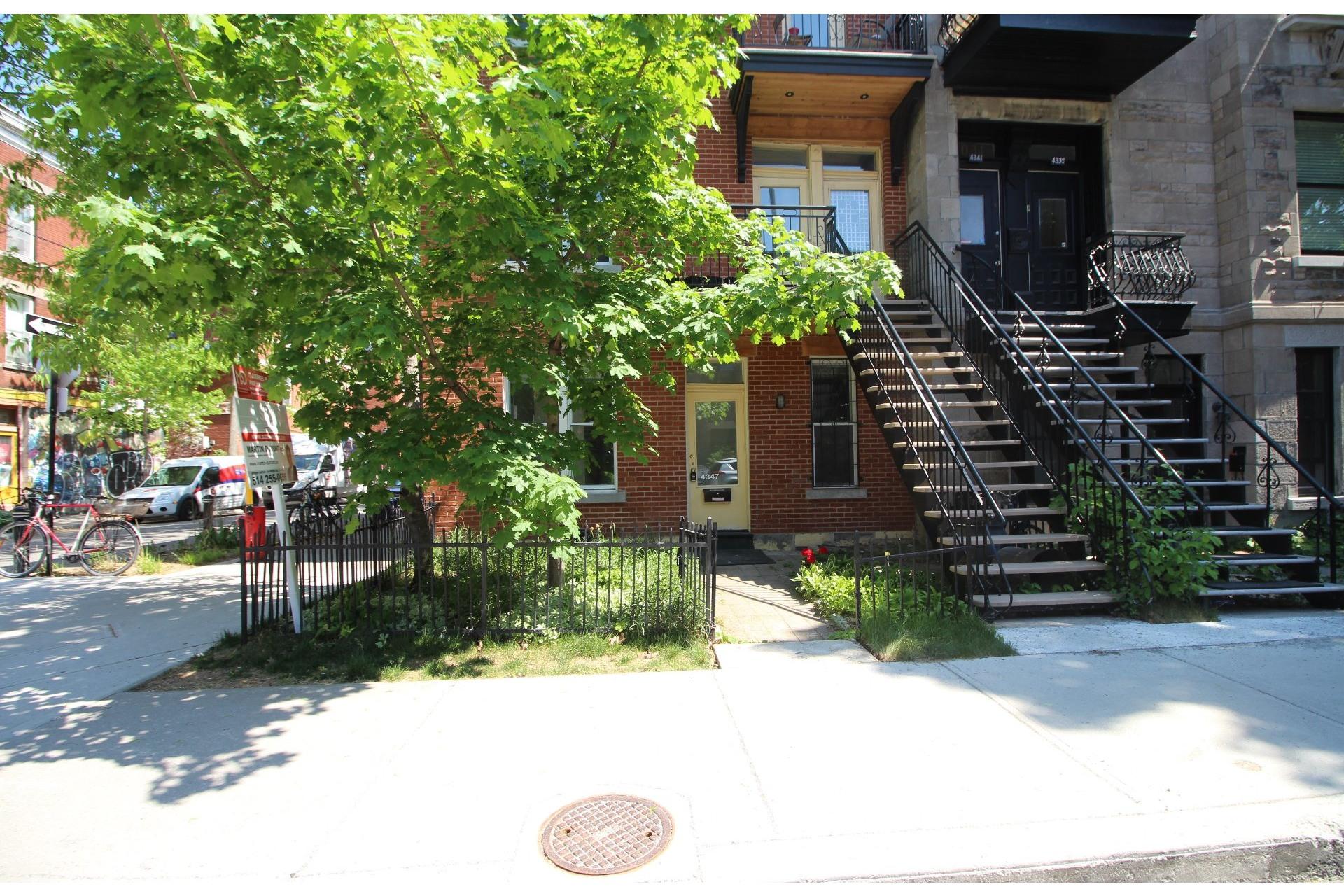 image 19 - Appartement À vendre Le Plateau-Mont-Royal Montréal  - 5 pièces