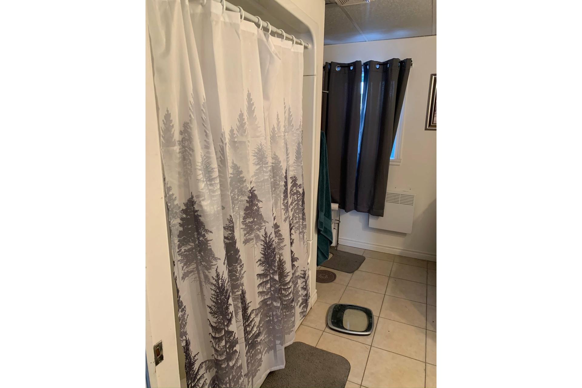 image 17 - Duplex For sale Trois-Rivières - 6 rooms