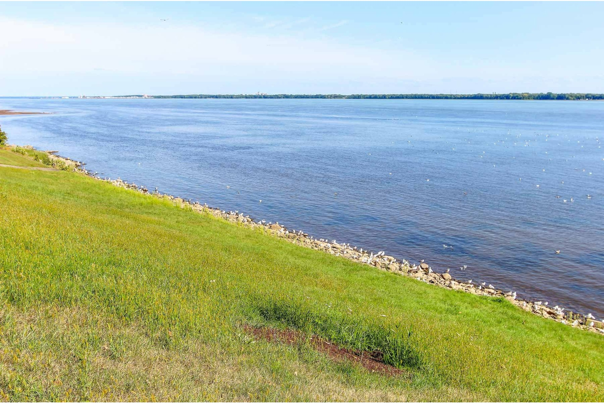 image 4 - Terrain À vendre Trois-Rivières