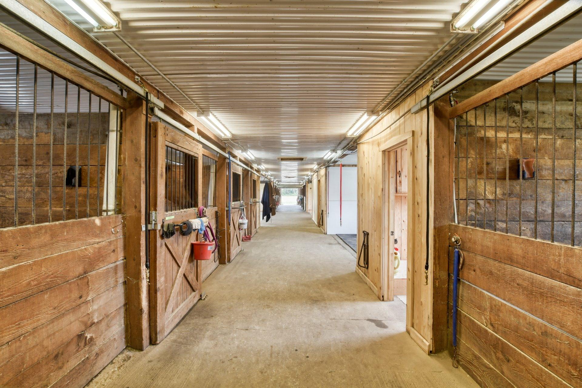 image 2 - Farm For sale Sainte-Marie-Salomé - 10 rooms