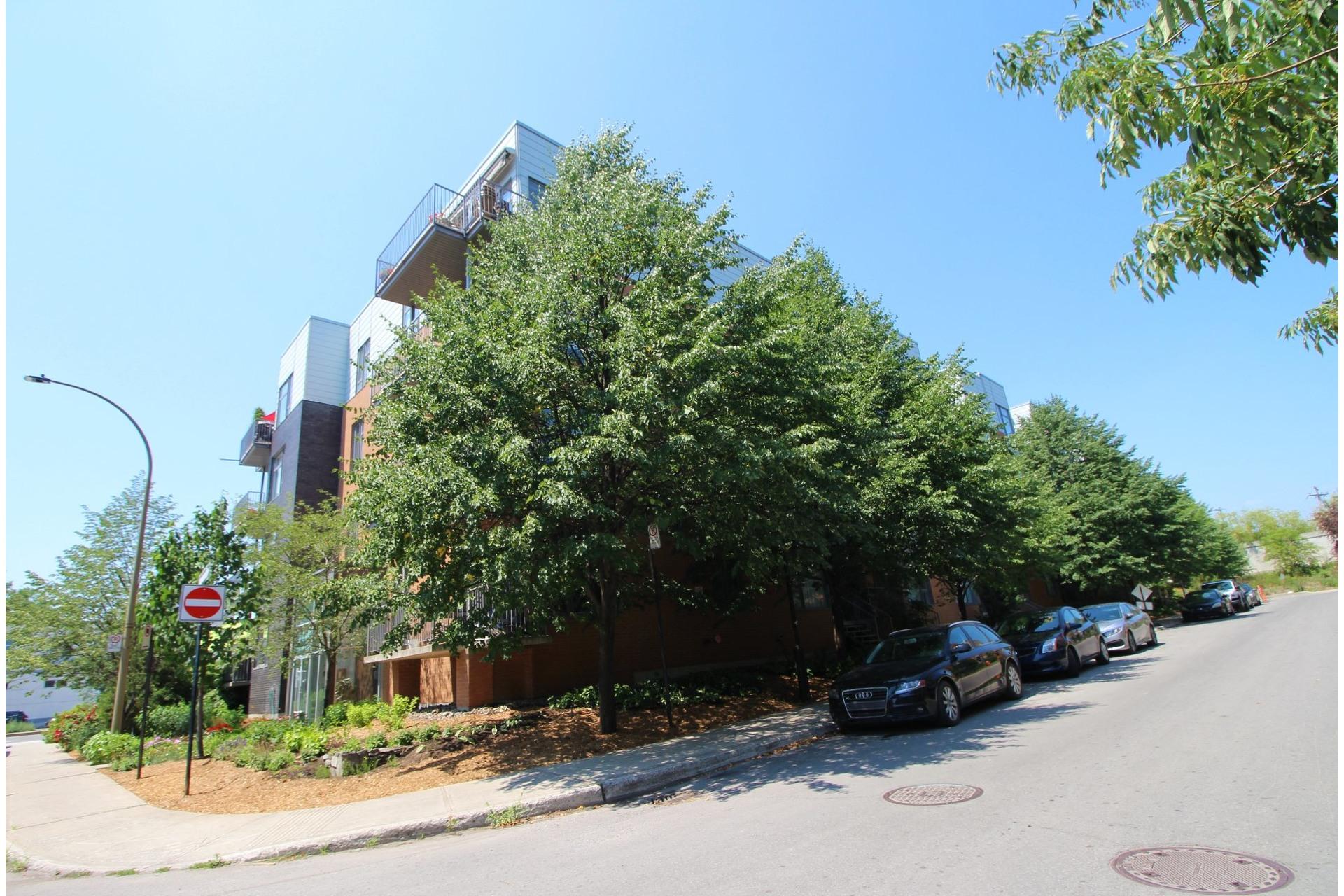 image 16 - Appartement À vendre Le Plateau-Mont-Royal Montréal  - 3 pièces