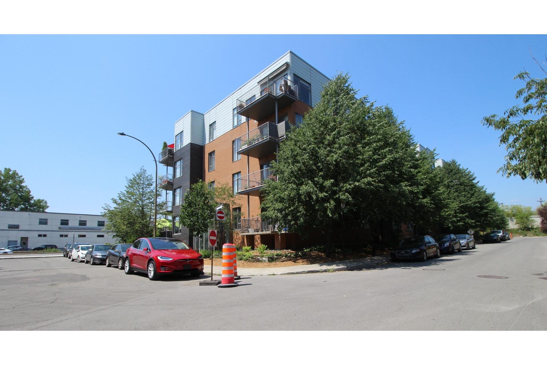 image 15 - Appartement À vendre Le Plateau-Mont-Royal Montréal  - 3 pièces