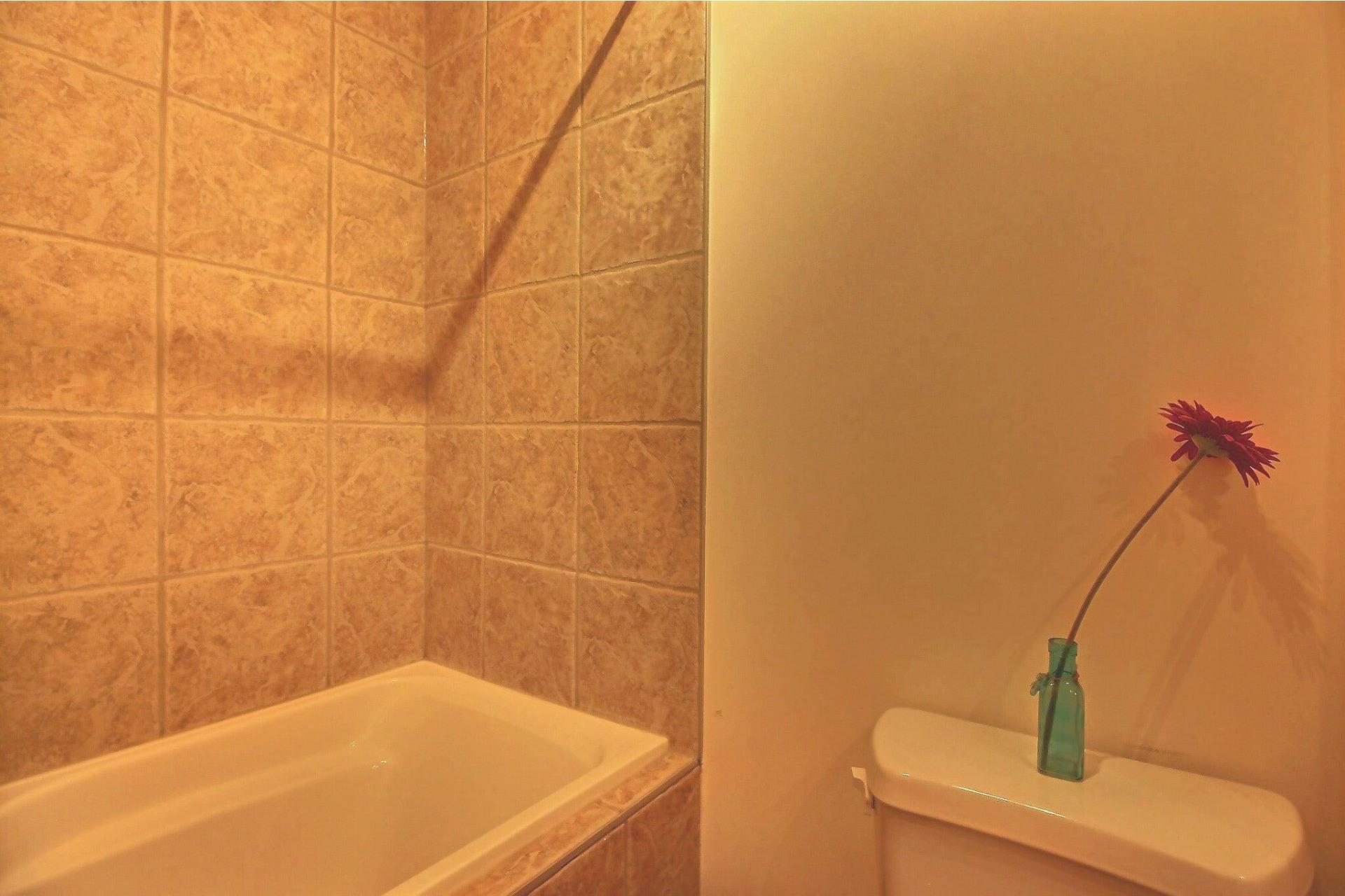 image 12 - Appartement À vendre Le Plateau-Mont-Royal Montréal  - 3 pièces