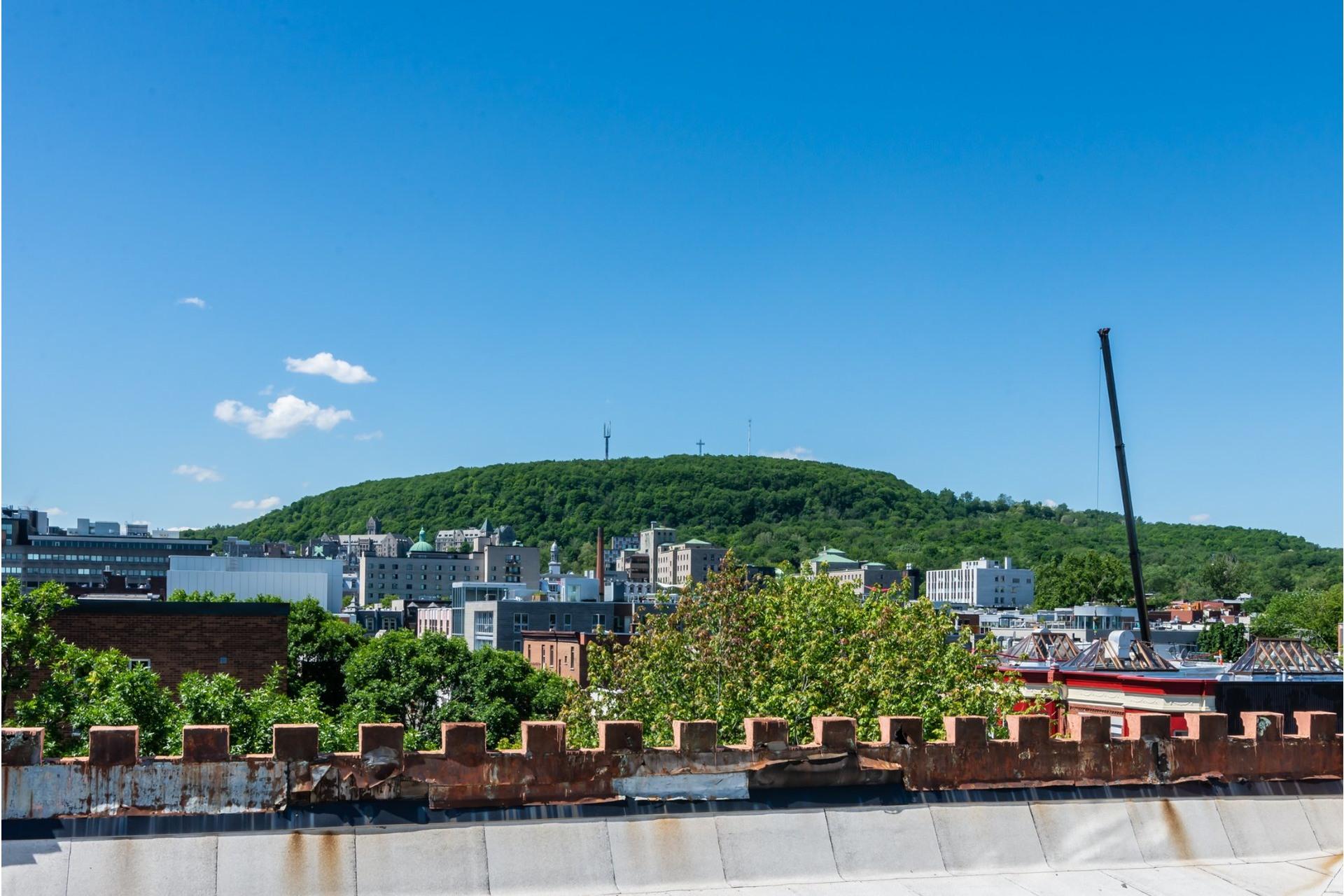 image 29 - Appartement À louer Le Plateau-Mont-Royal Montréal  - 7 pièces