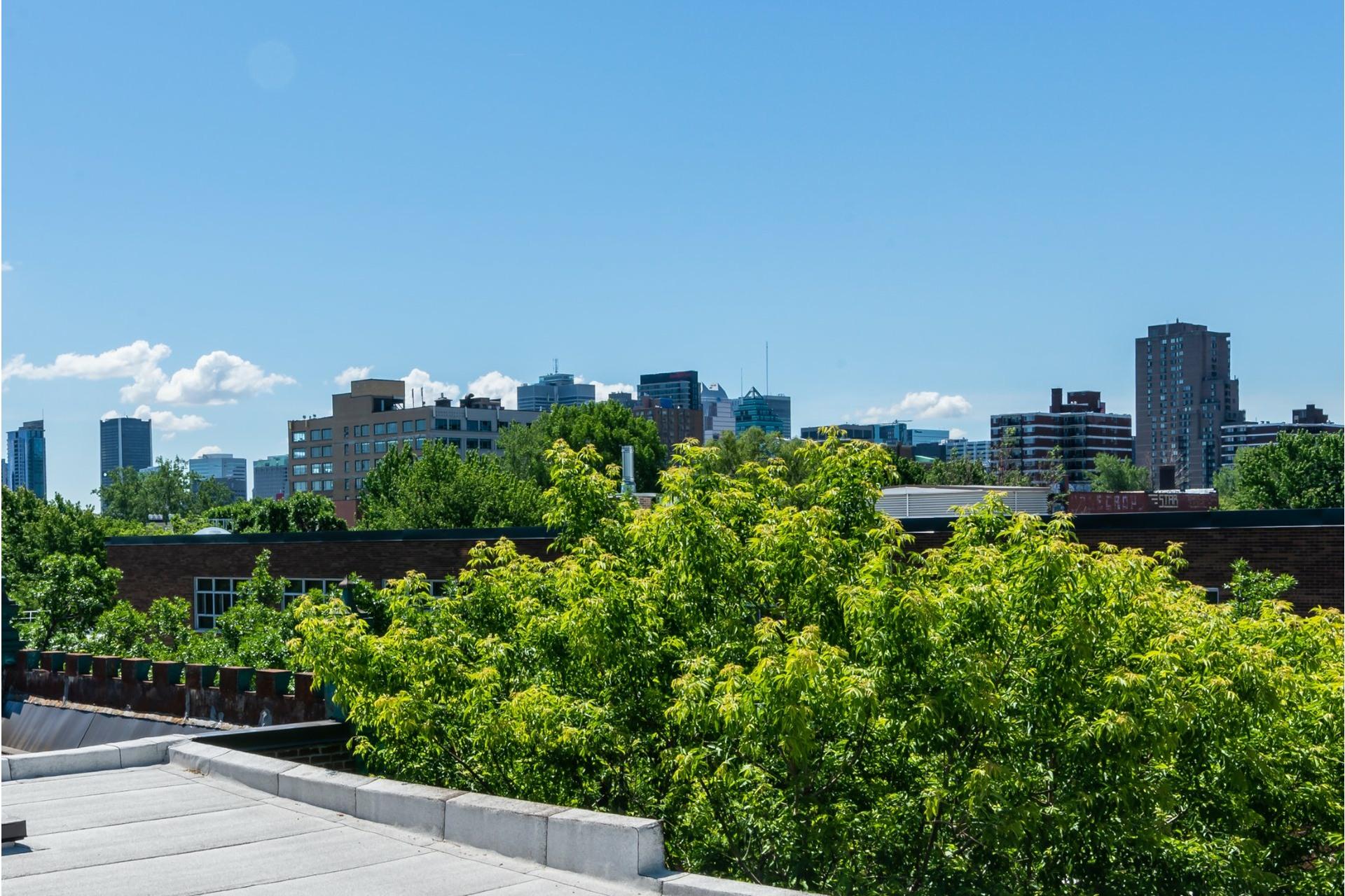 image 30 - Appartement À louer Le Plateau-Mont-Royal Montréal  - 7 pièces