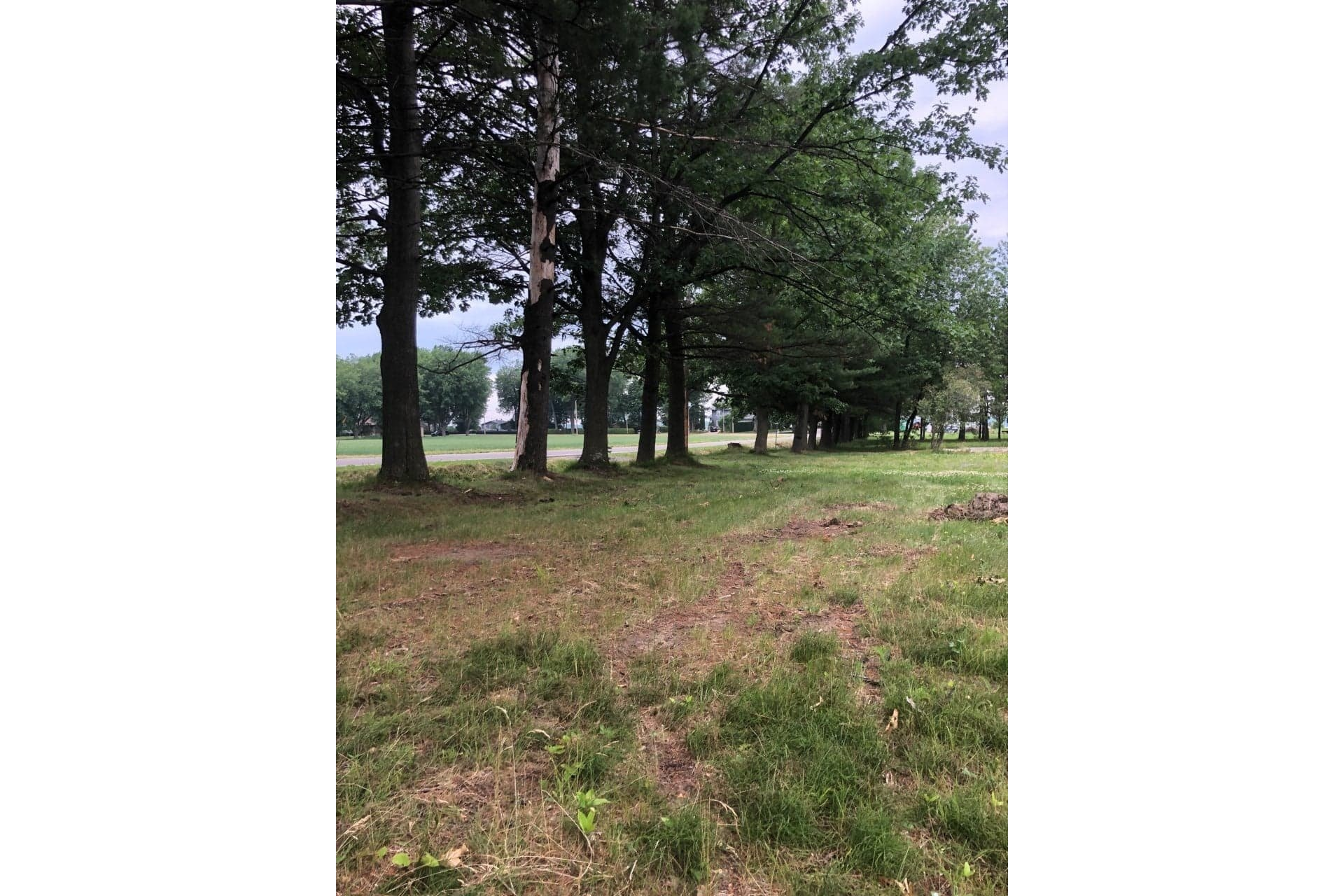 image 0 - Land For sale Nicolet