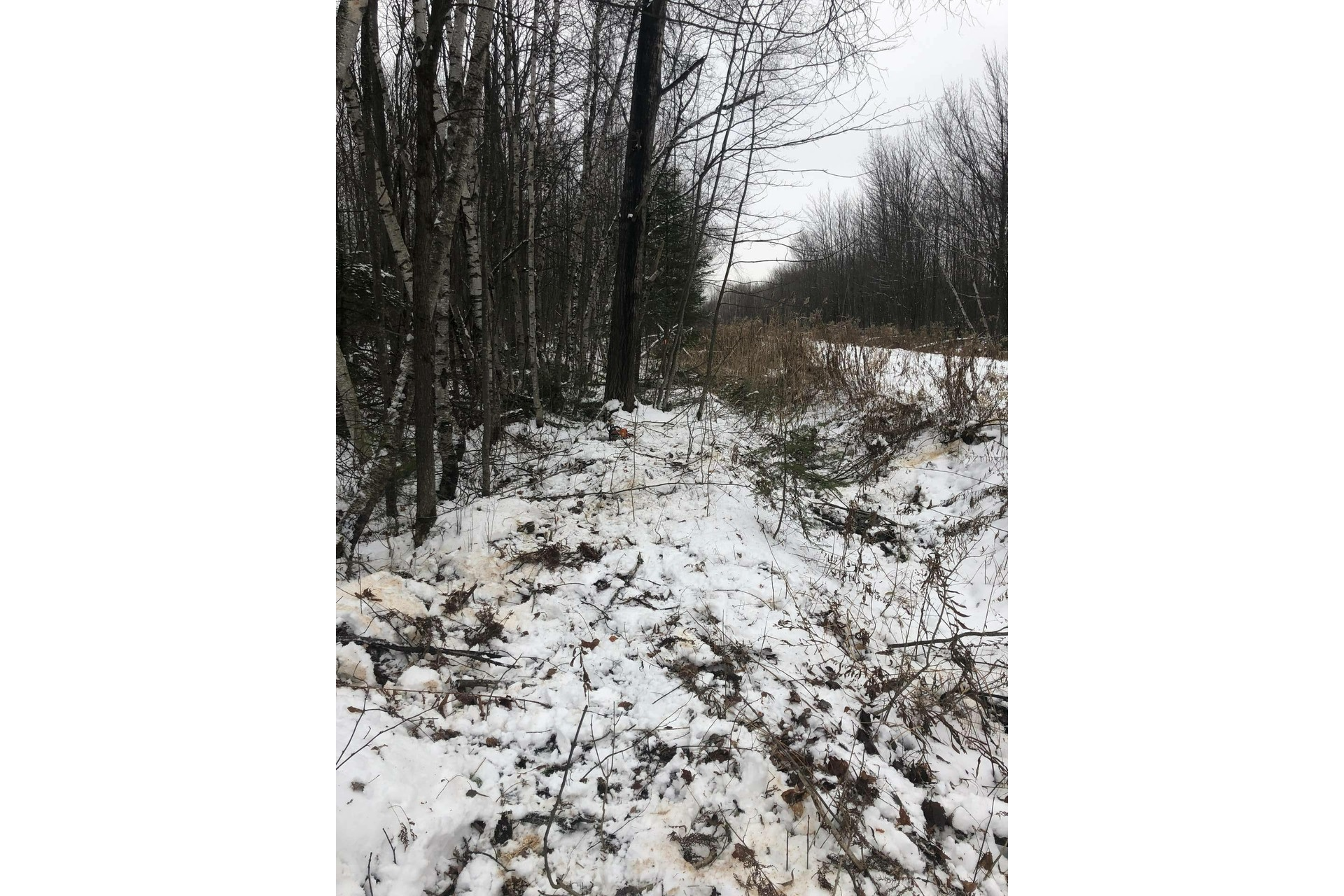 image 1 - Land For sale Bécancour