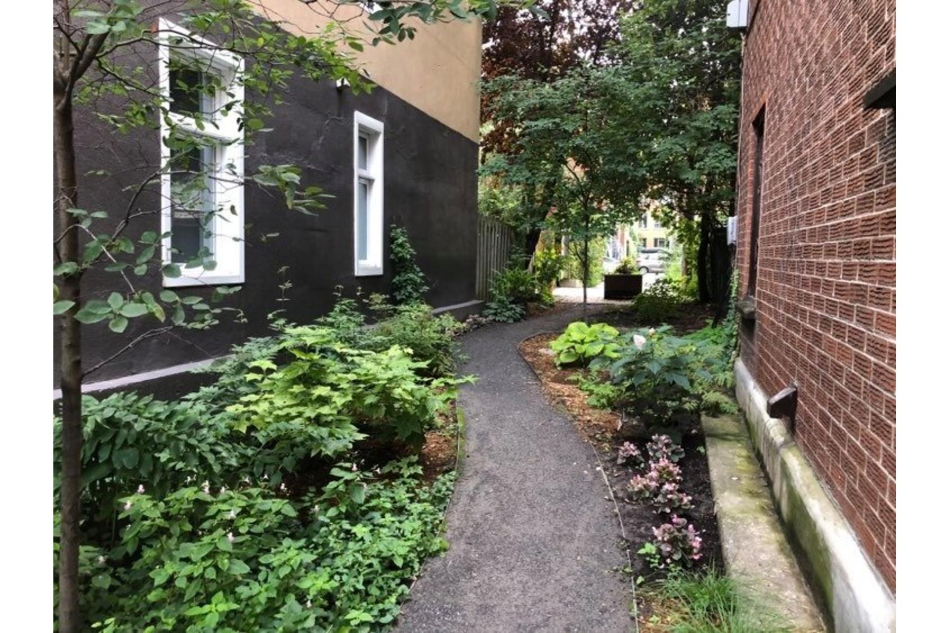 image 3 - Appartement À vendre Le Plateau-Mont-Royal Montréal  - 8 pièces
