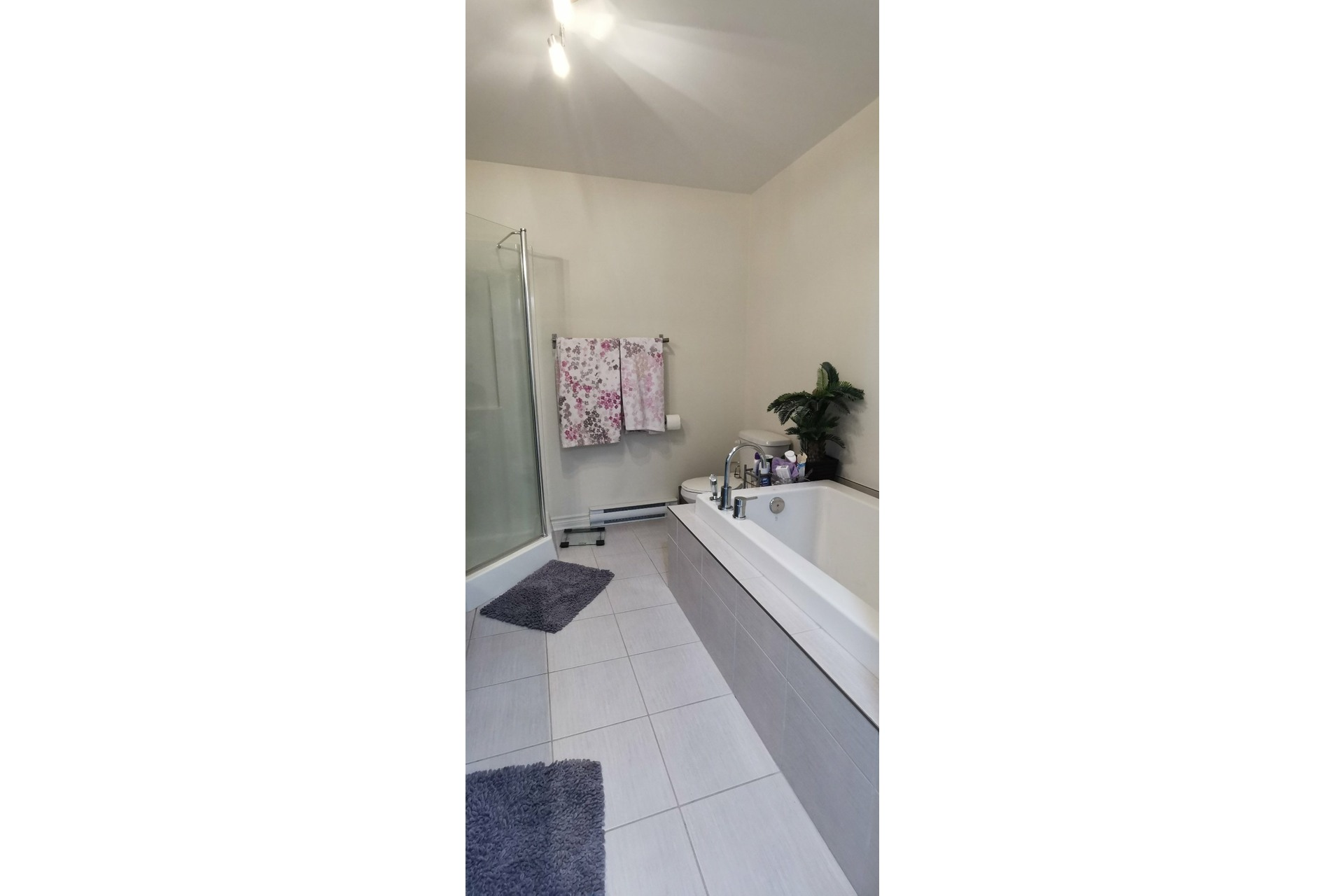 image 15 - House For rent Candiac - 9 rooms
