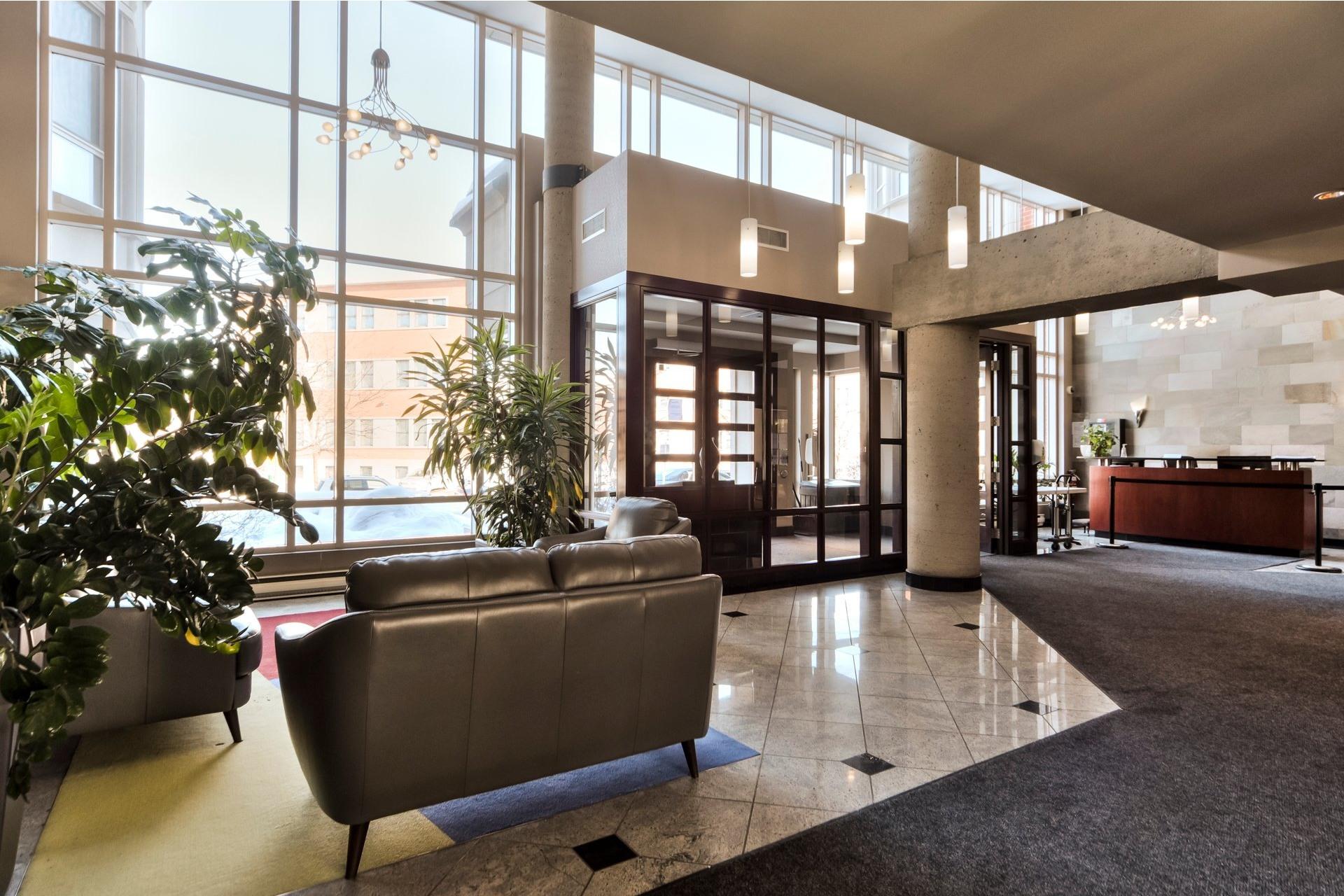 image 2 - Appartement À vendre Mont-Royal - 8 pièces