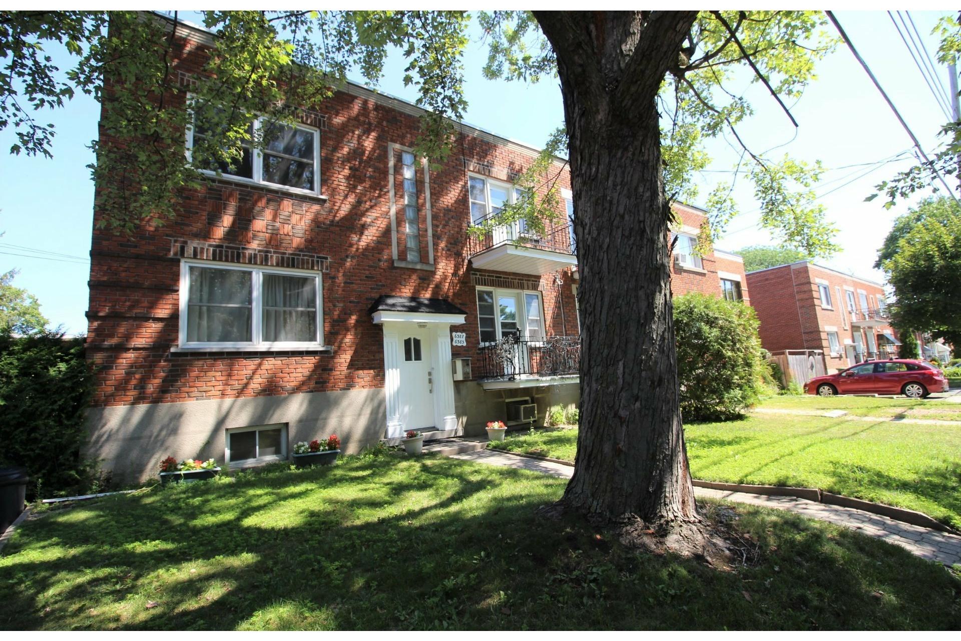 image 0 - Apartment For rent Rosemont/La Petite-Patrie Montréal  - 5 rooms