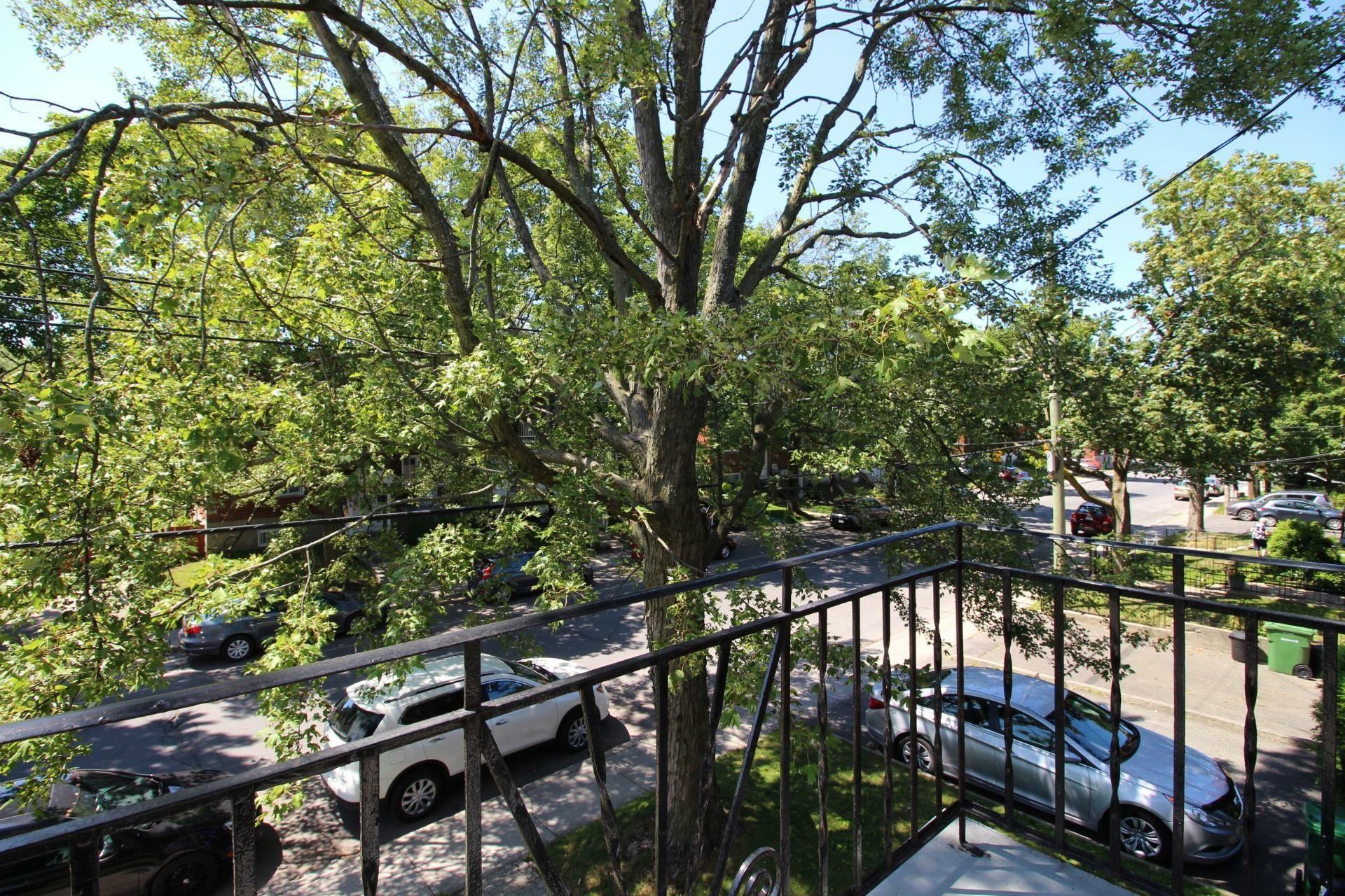 image 14 - Apartment For rent Rosemont/La Petite-Patrie Montréal  - 5 rooms