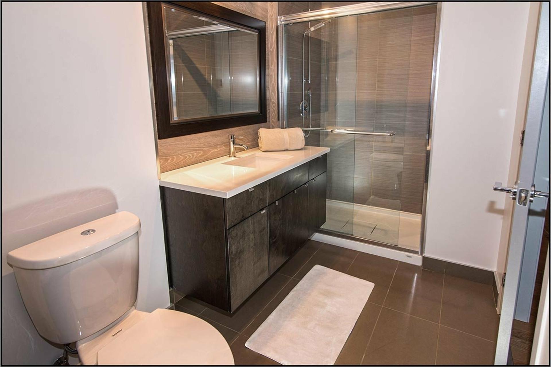 image 9 - Apartment For sale Saint-Augustin-de-Desmaures - 10 rooms