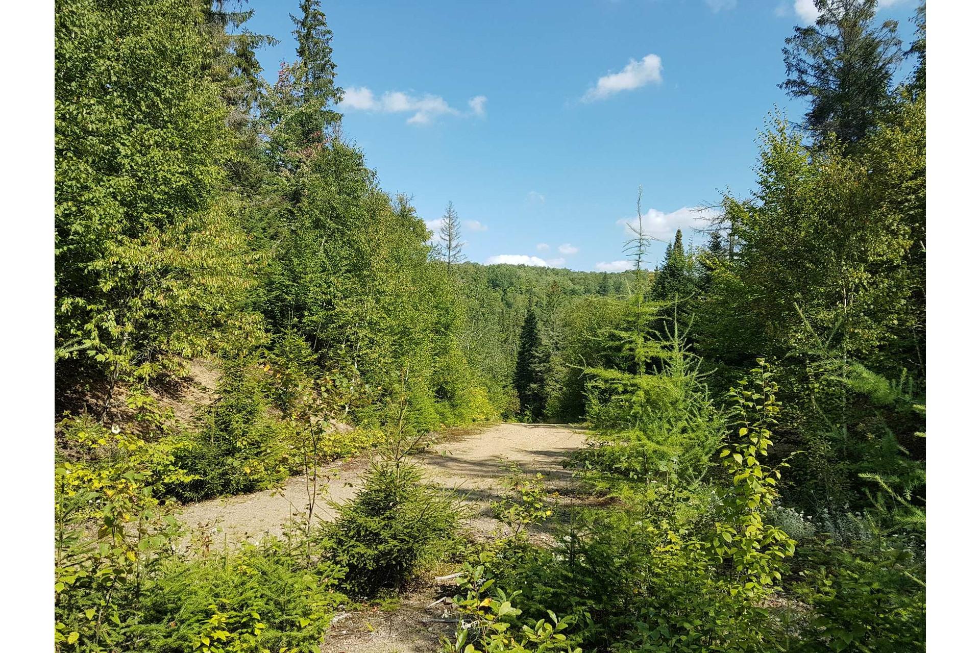 image 4 - Land For sale Lac-Supérieur