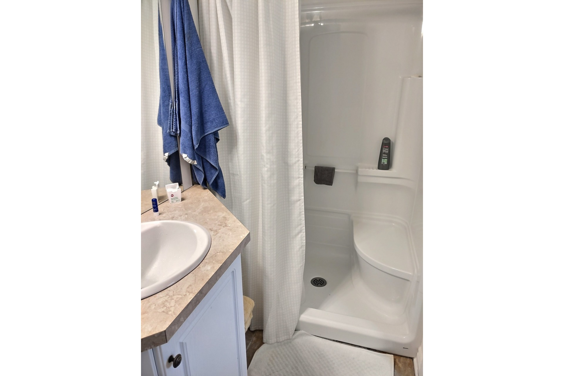 image 13 - Apartment For rent Dorval - 4 rooms