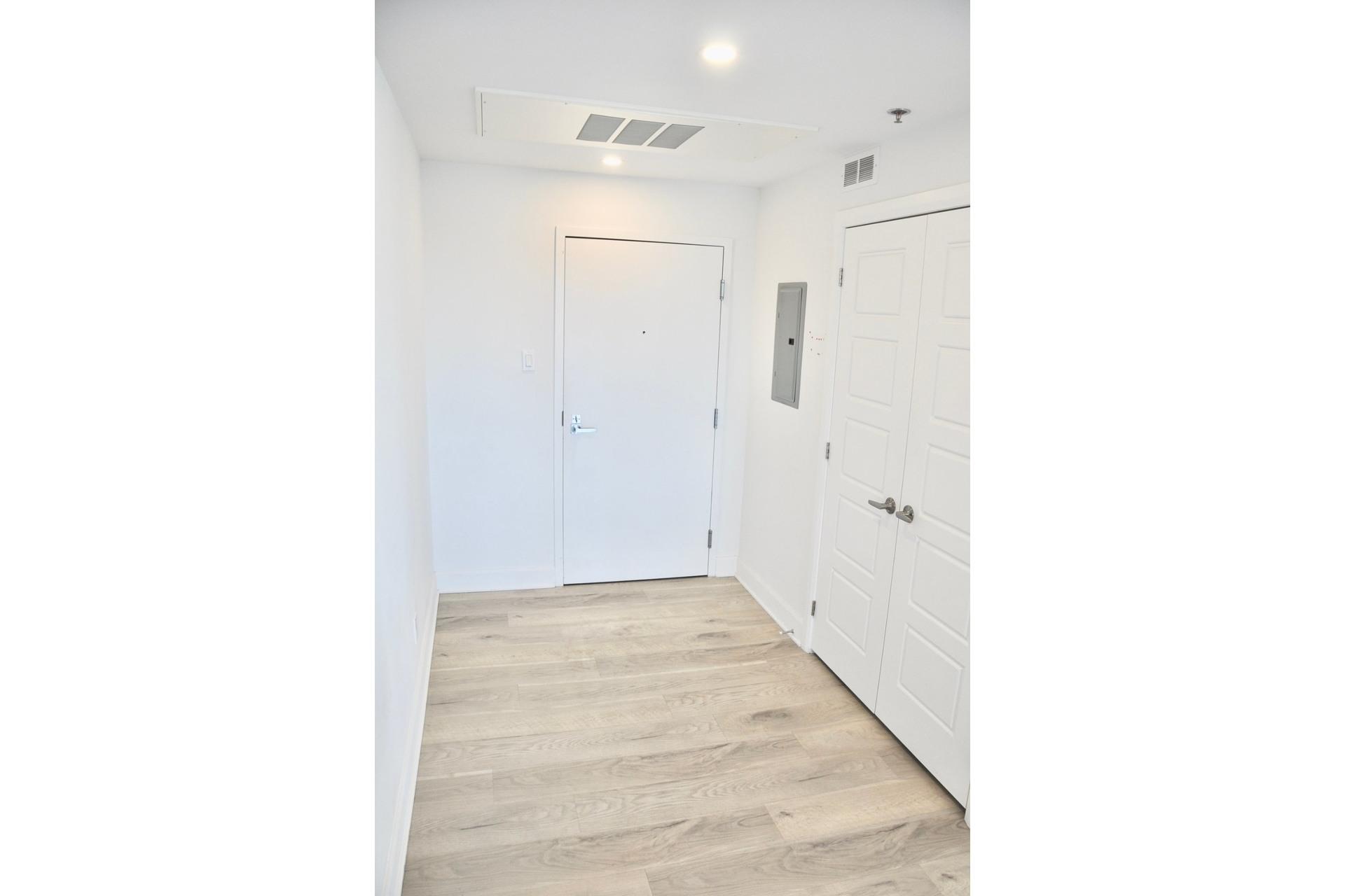 image 4 - Appartement À vendre Mont-Royal - 9 pièces