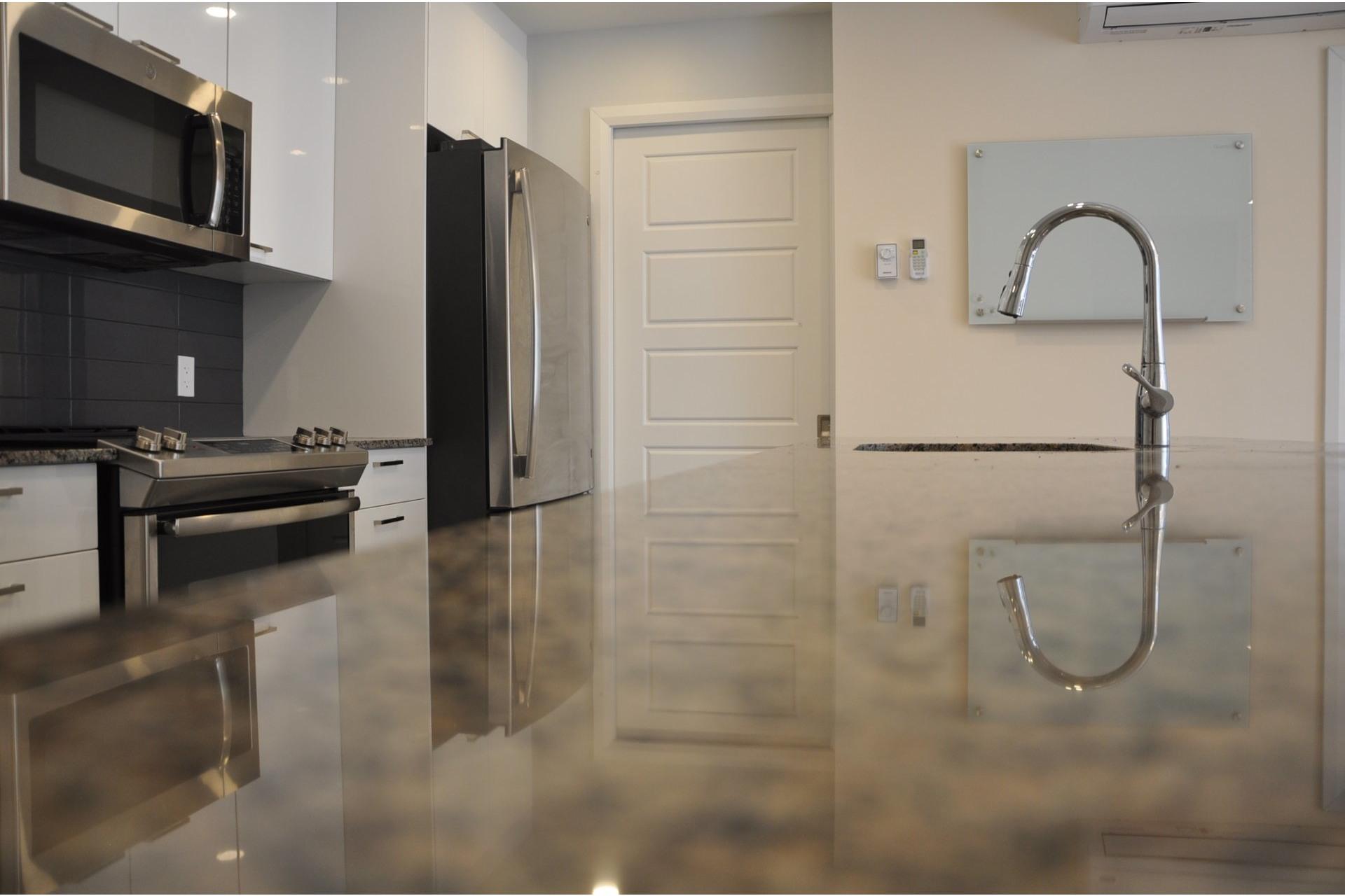image 5 - Appartement À vendre Mont-Royal - 8 pièces