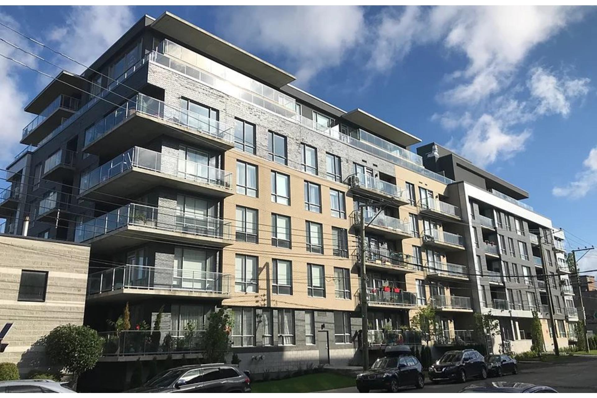 image 24 - Appartement À vendre Mont-Royal - 8 pièces