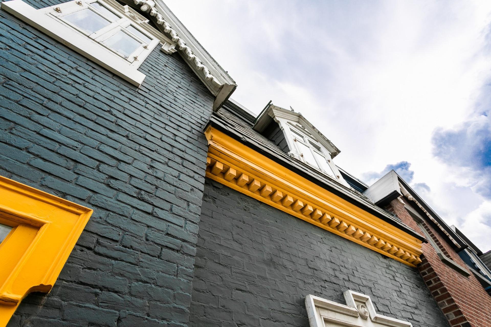 image 3 - Maison À vendre Le Plateau-Mont-Royal Montréal  - 7 pièces