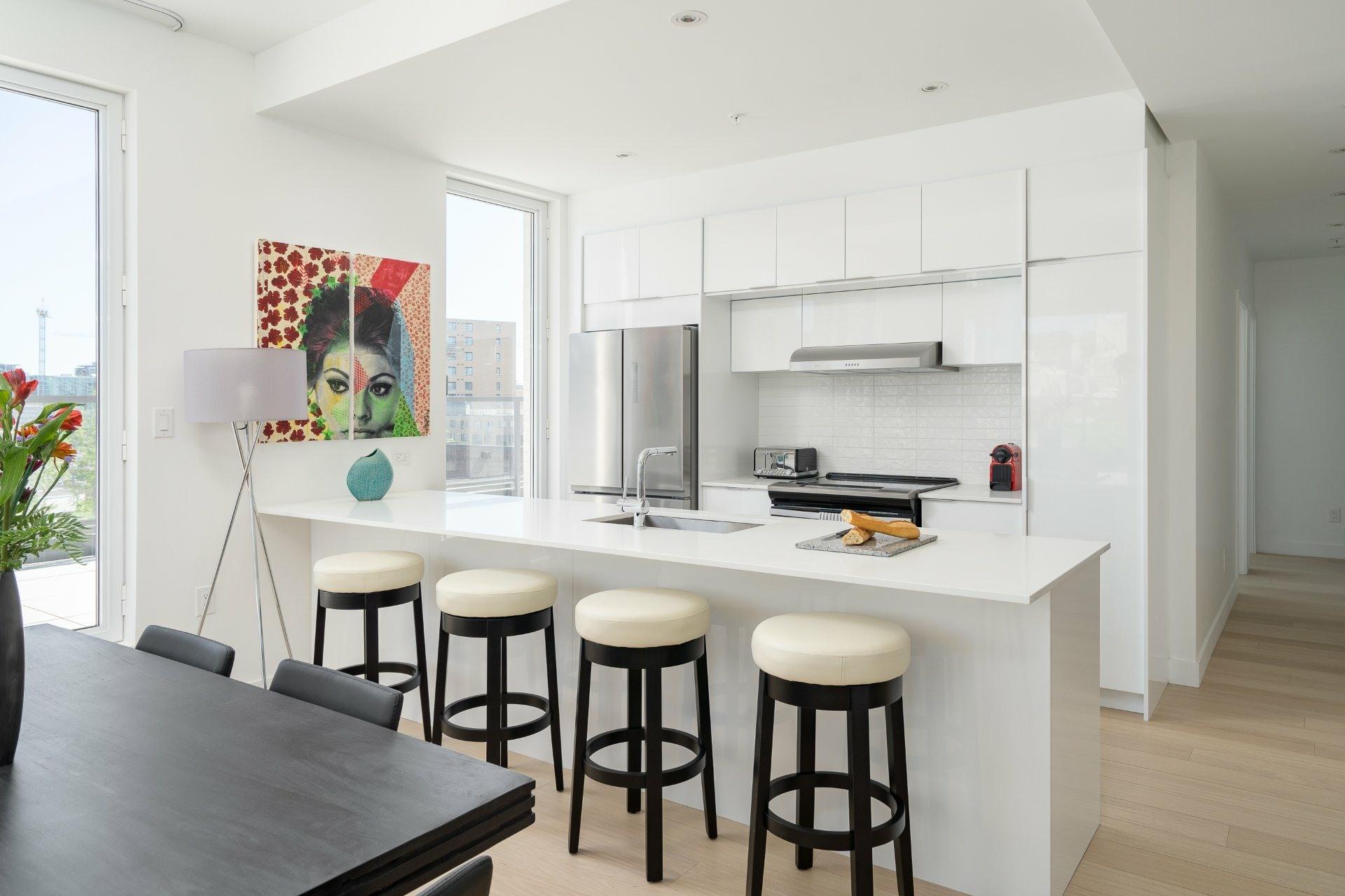 image 3 - Appartement À vendre Le Sud-Ouest Montréal  - 9 pièces