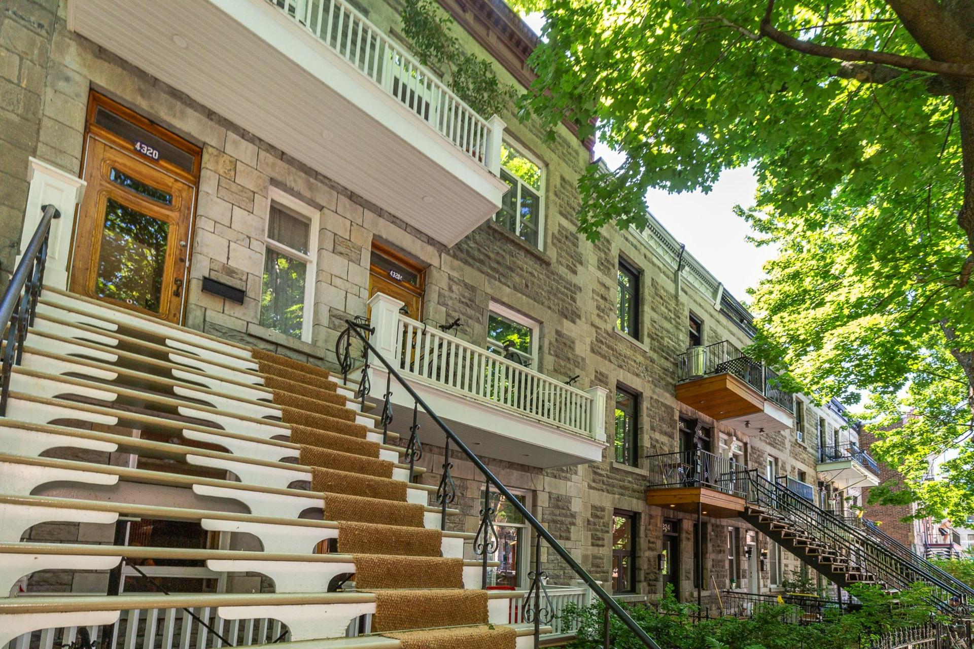 image 1 - Apartment For sale Le Plateau-Mont-Royal Montréal  - 8 rooms
