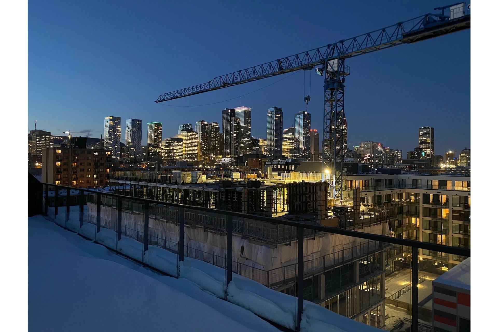 image 21 - Appartement À vendre Le Sud-Ouest Montréal  - 4 pièces