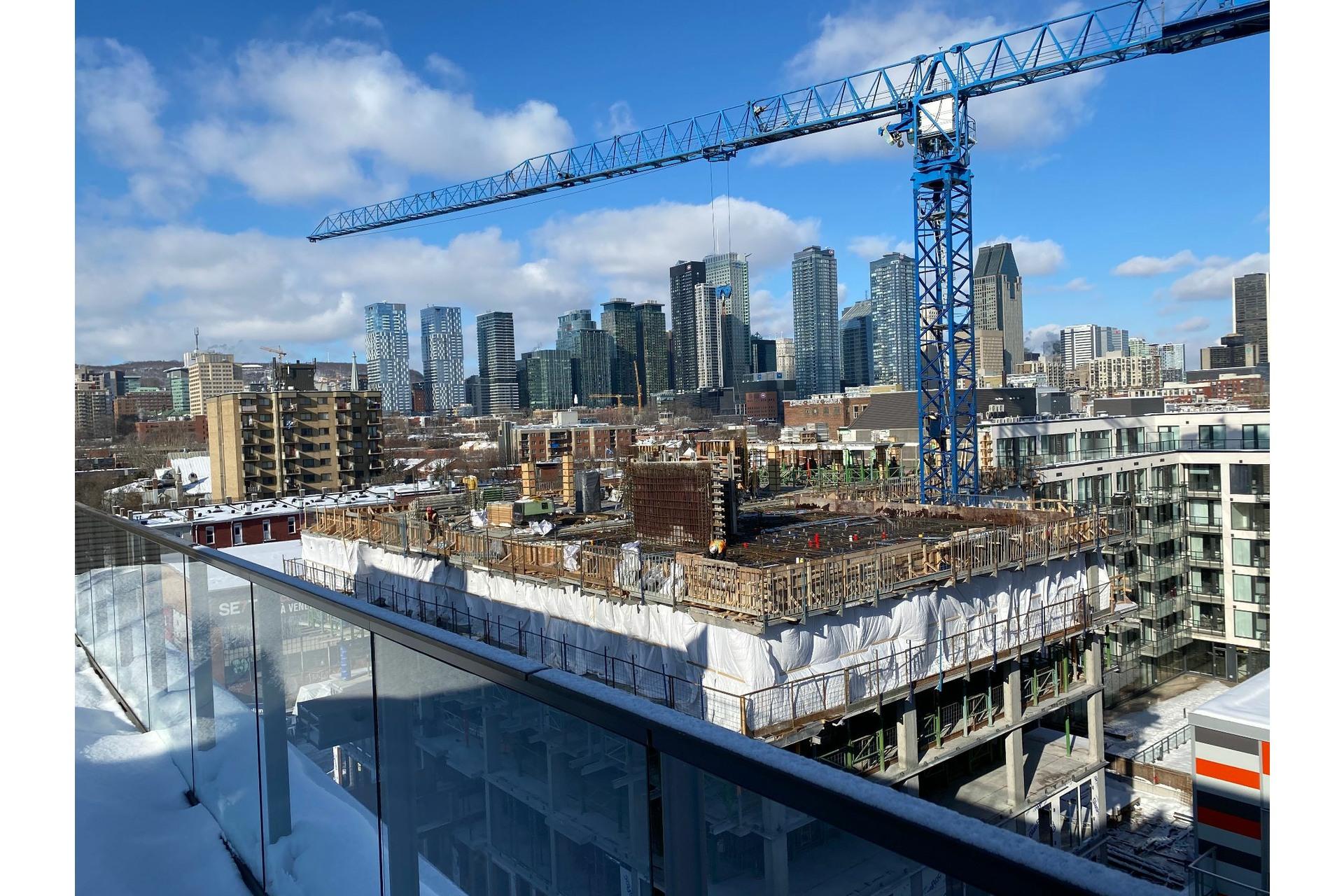 image 20 - Appartement À vendre Le Sud-Ouest Montréal  - 4 pièces