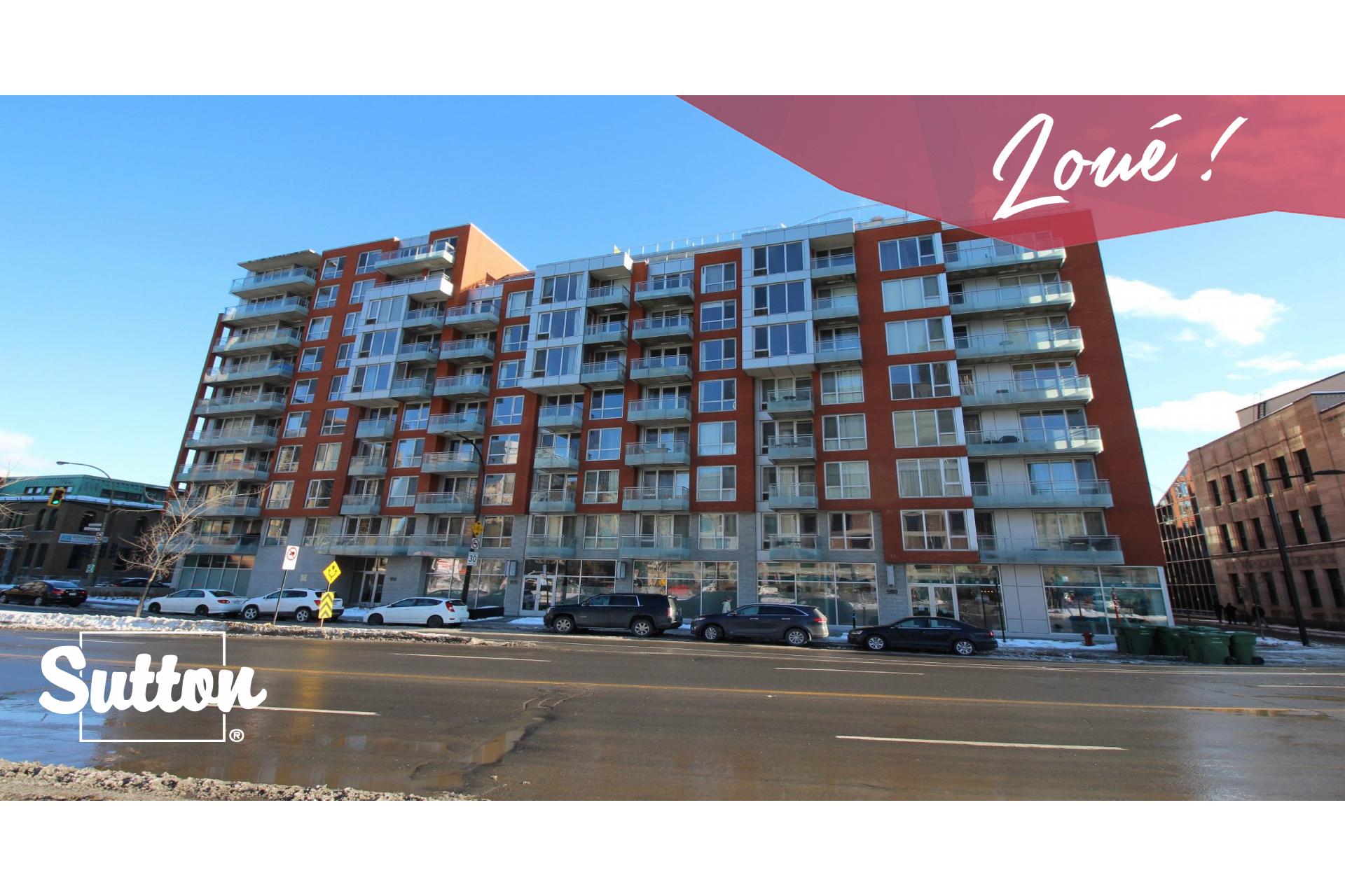 image 0 - Appartement À louer Montréal Le Sud-Ouest  - 7 pièces