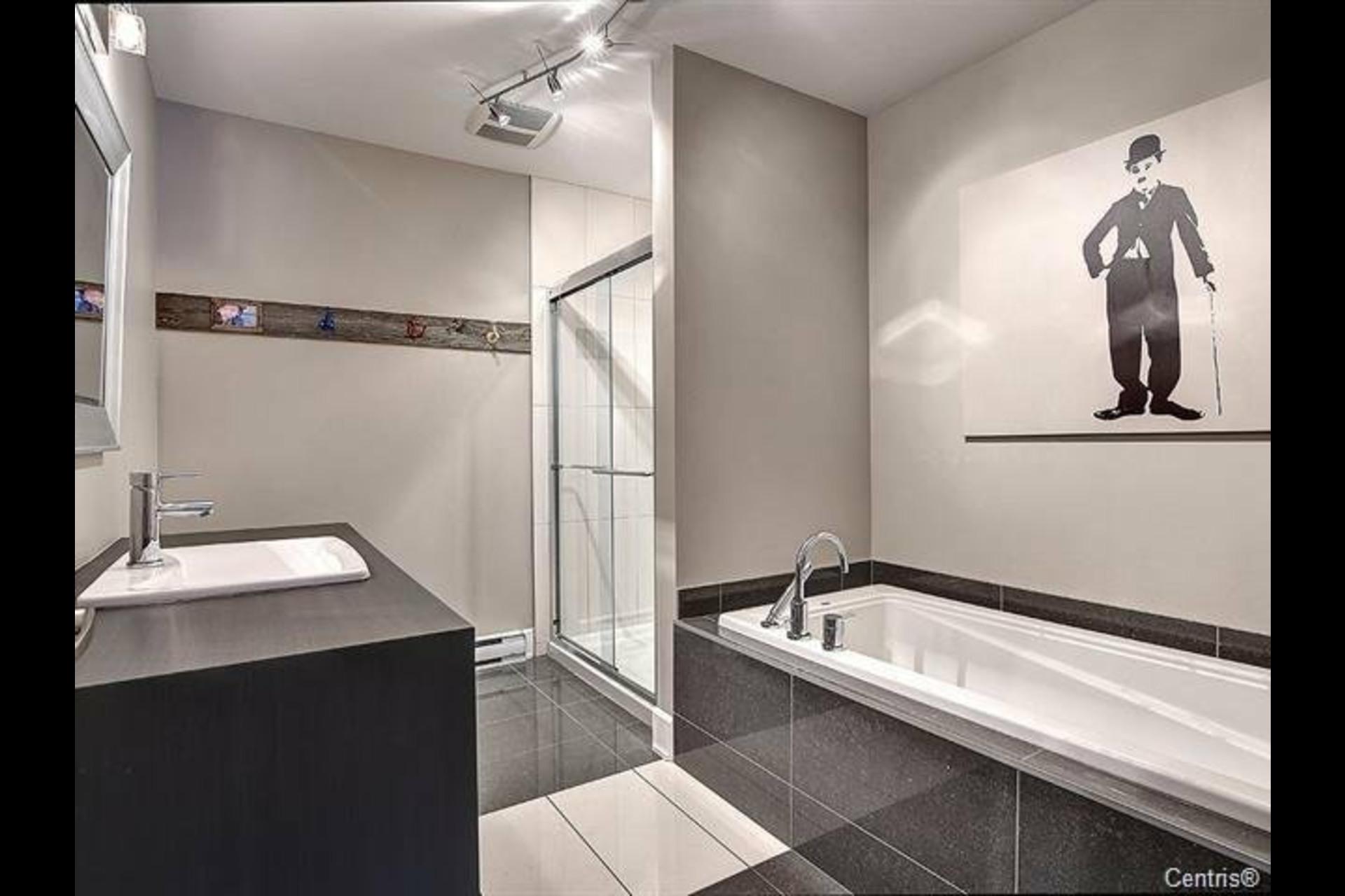 image 8 - Appartement À louer Mont-Saint-Hilaire - 9 pièces