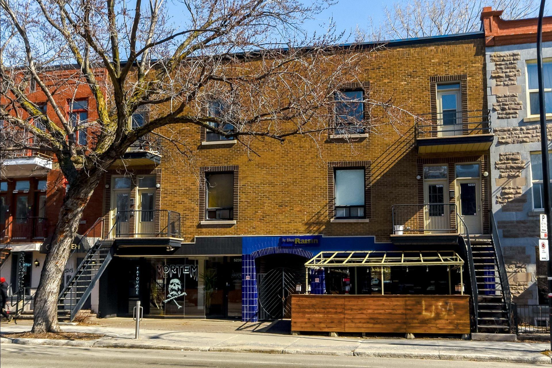 image 0 - Immeuble à revenus À vendre Montréal Le Plateau-Mont-Royal