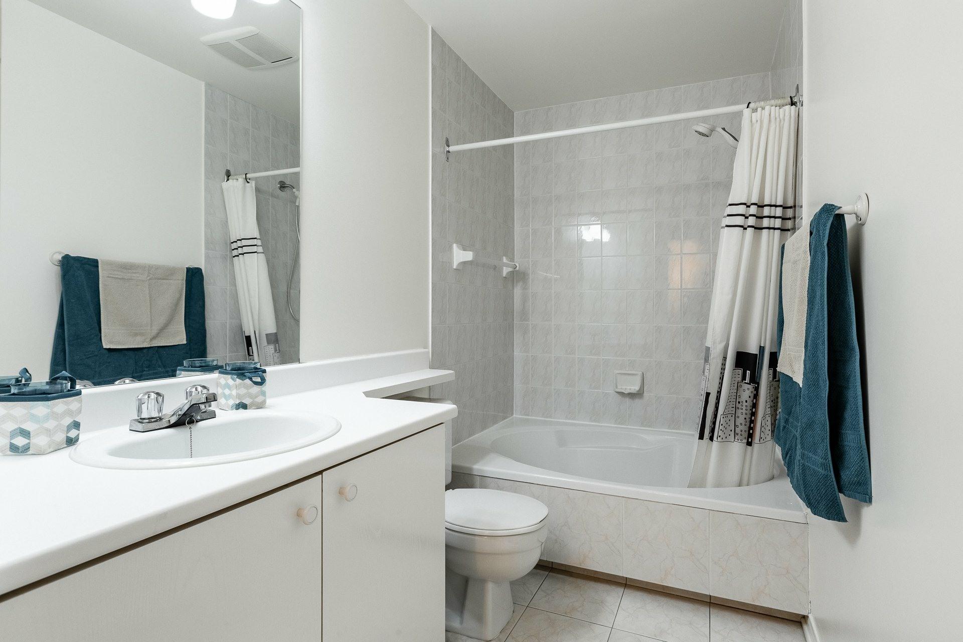 image 15 - Appartement À vendre Montréal Le Plateau-Mont-Royal  - 6 pièces