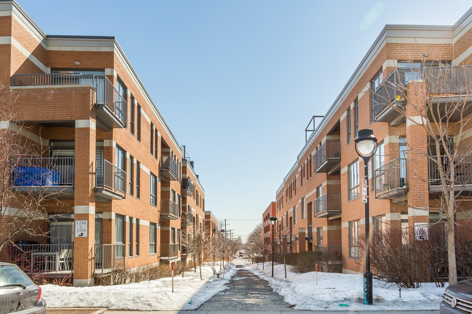 image 18 - Condo À vendre Montréal Le Plateau-Mont-Royal
