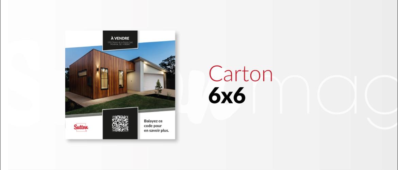 Carton 1 propriété